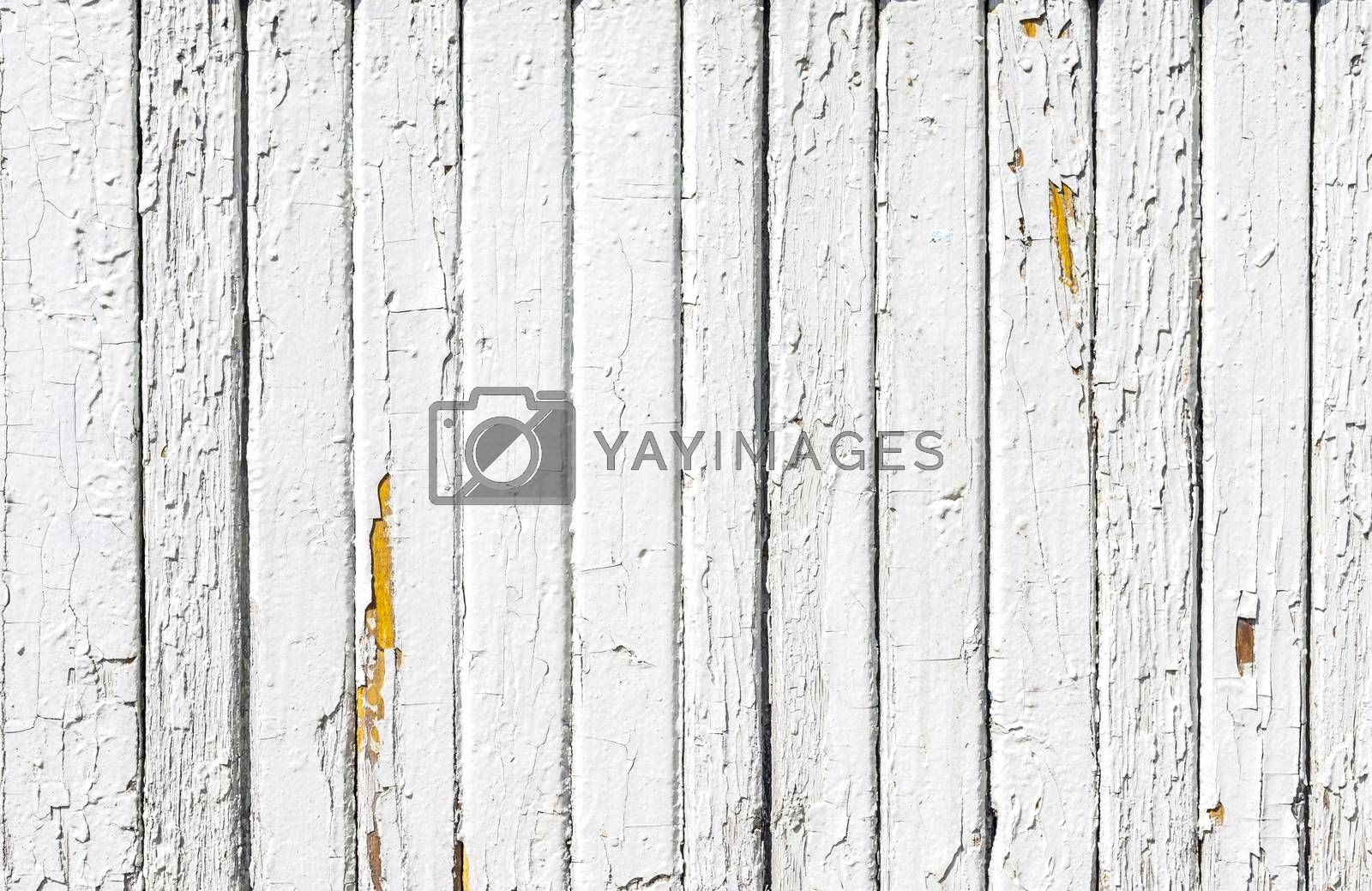 Royalty free image of Vintage  White  Wood Wall by H2Oshka