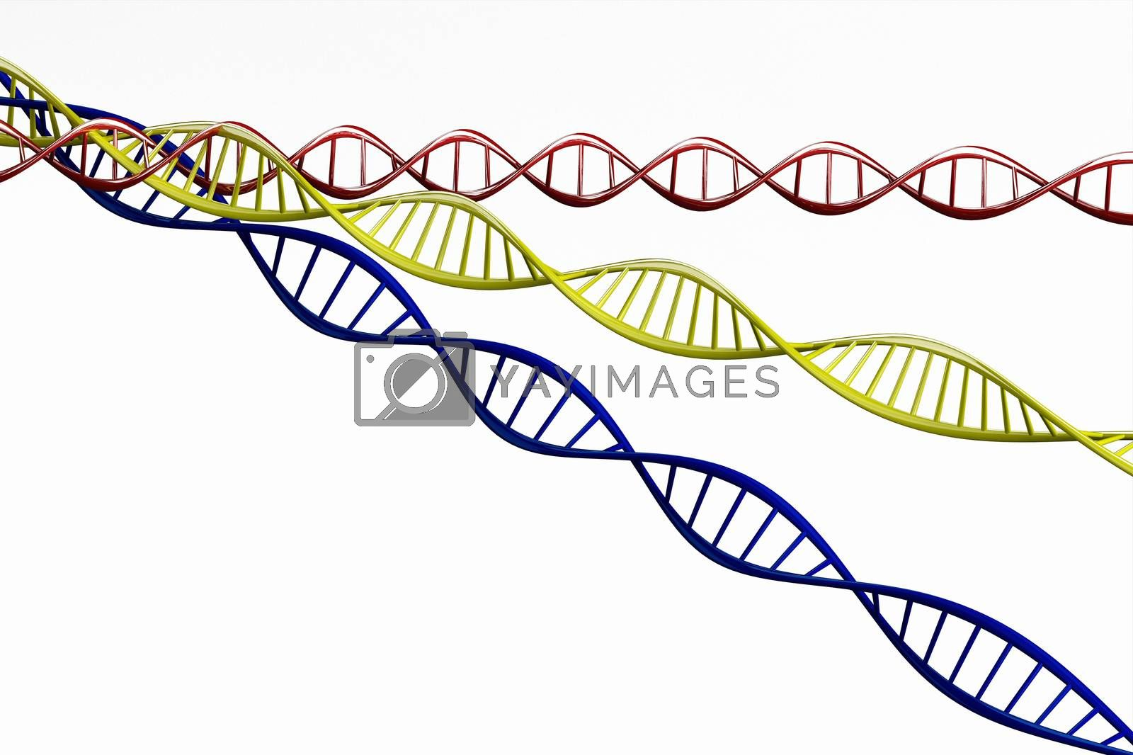 3d render ,Model of twisted DNA chain isolated on white background High resolution.