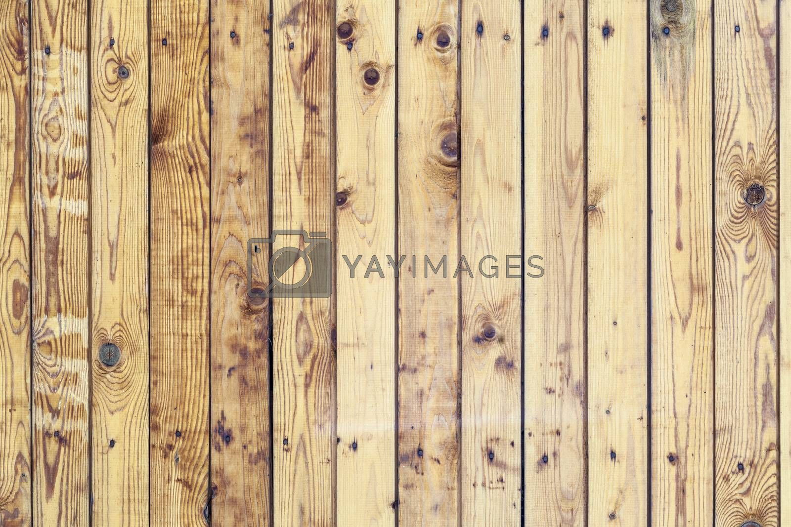 Natural Dark Wooden Background. Timber wall