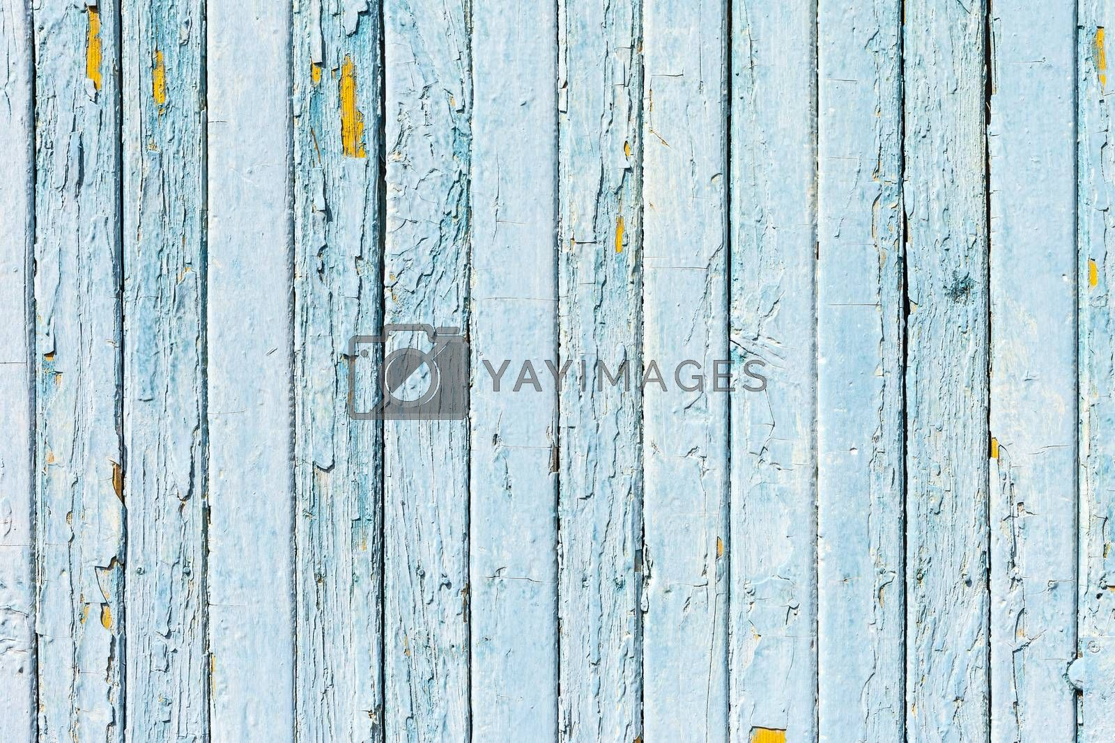 Royalty free image of Vintage Blue background wood wall, concept by H2Oshka
