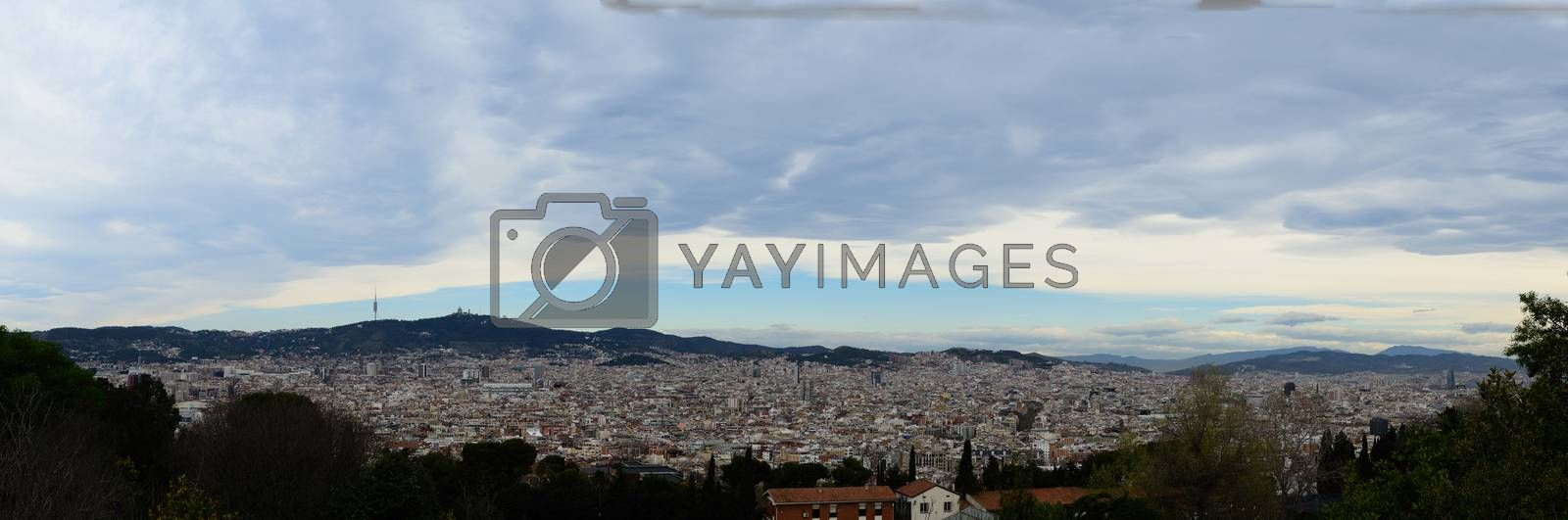 barcelona city with lot of houses panorama view