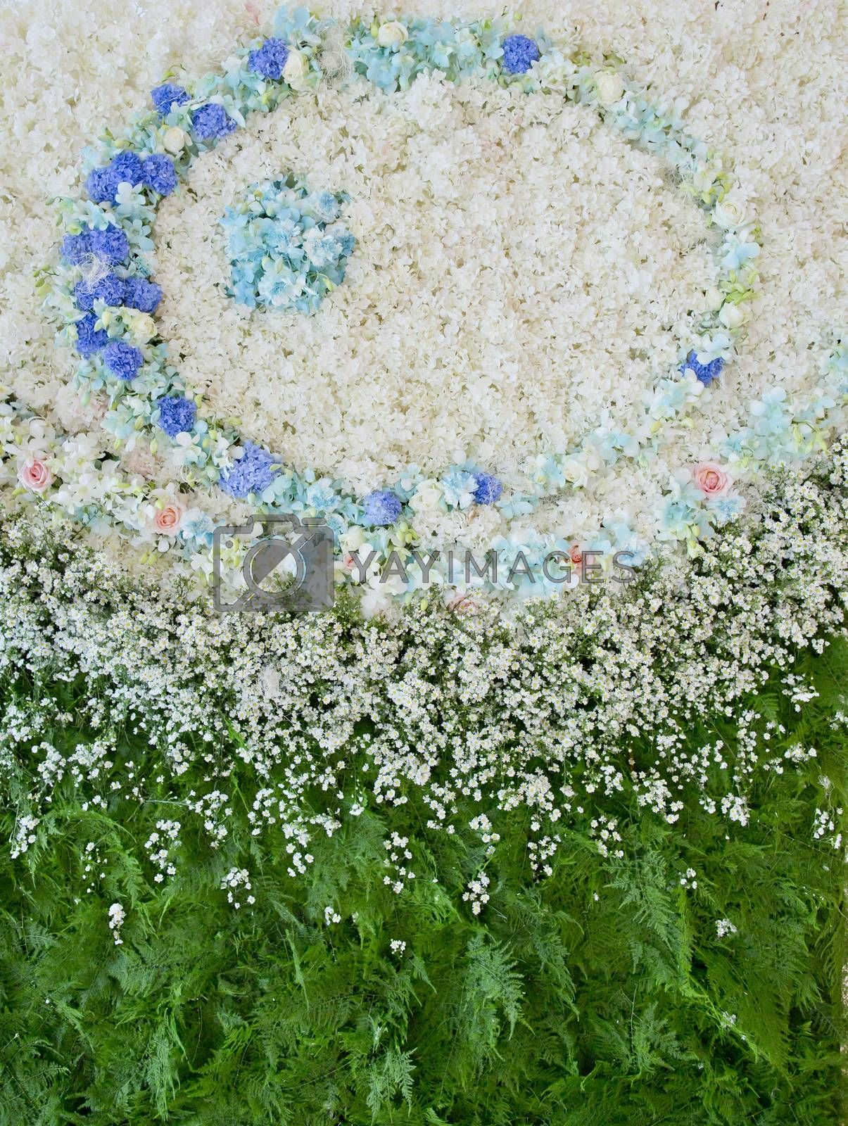 Royalty free image of Abstract background of flowers. Close-up floral wedding backdrop by art9858