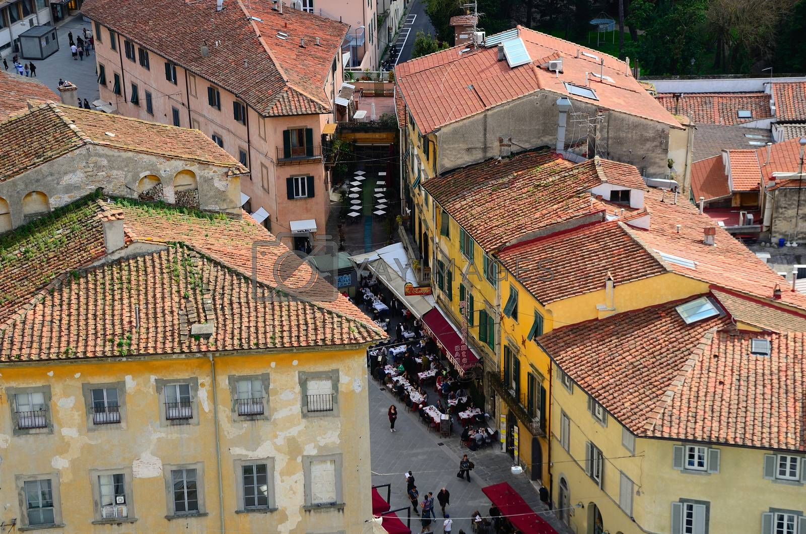 beautiful old houses in Pisa Italy view from above