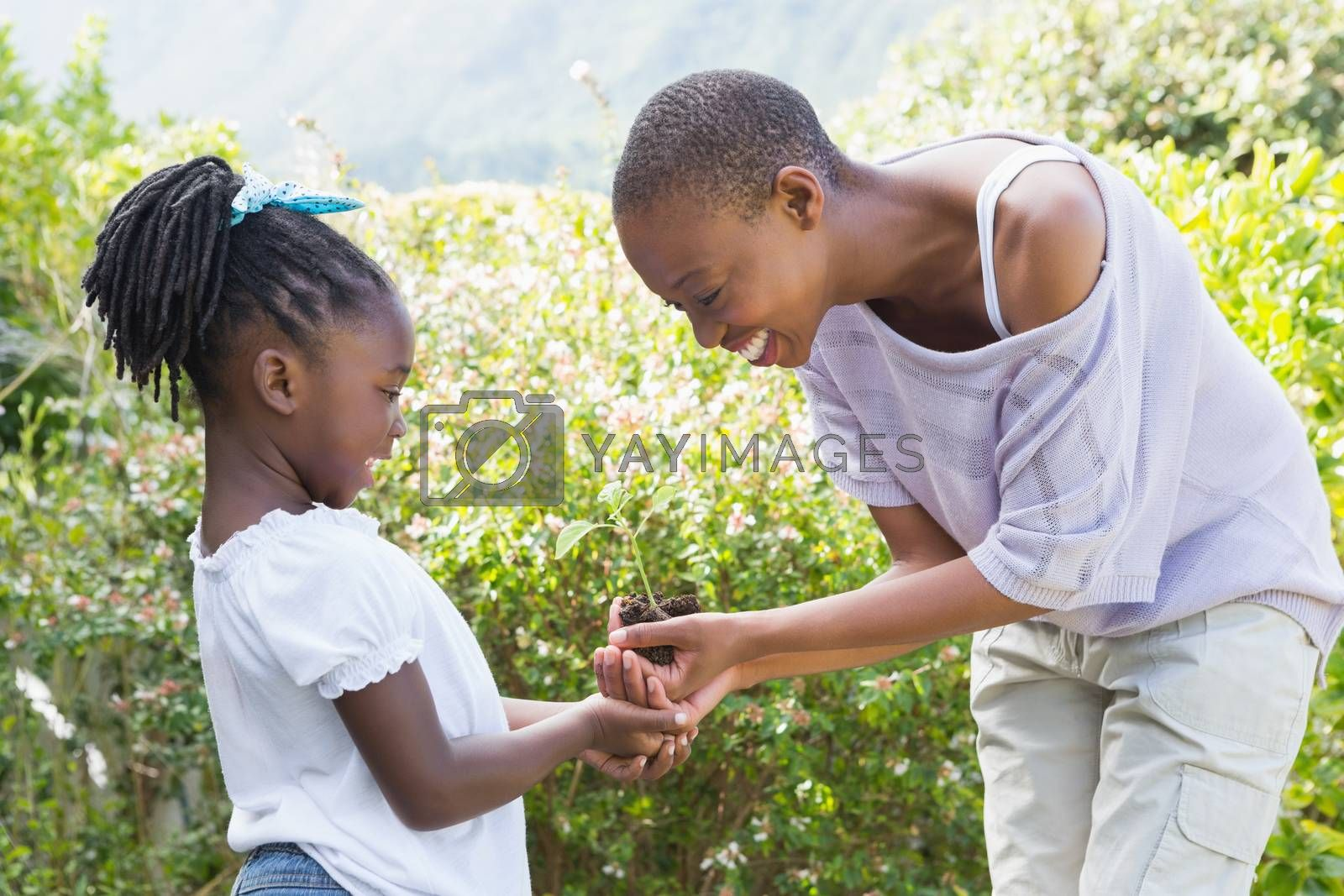 Royalty free image of Happy smiling beautiful mother plant a flower with her daughter  by Wavebreakmedia