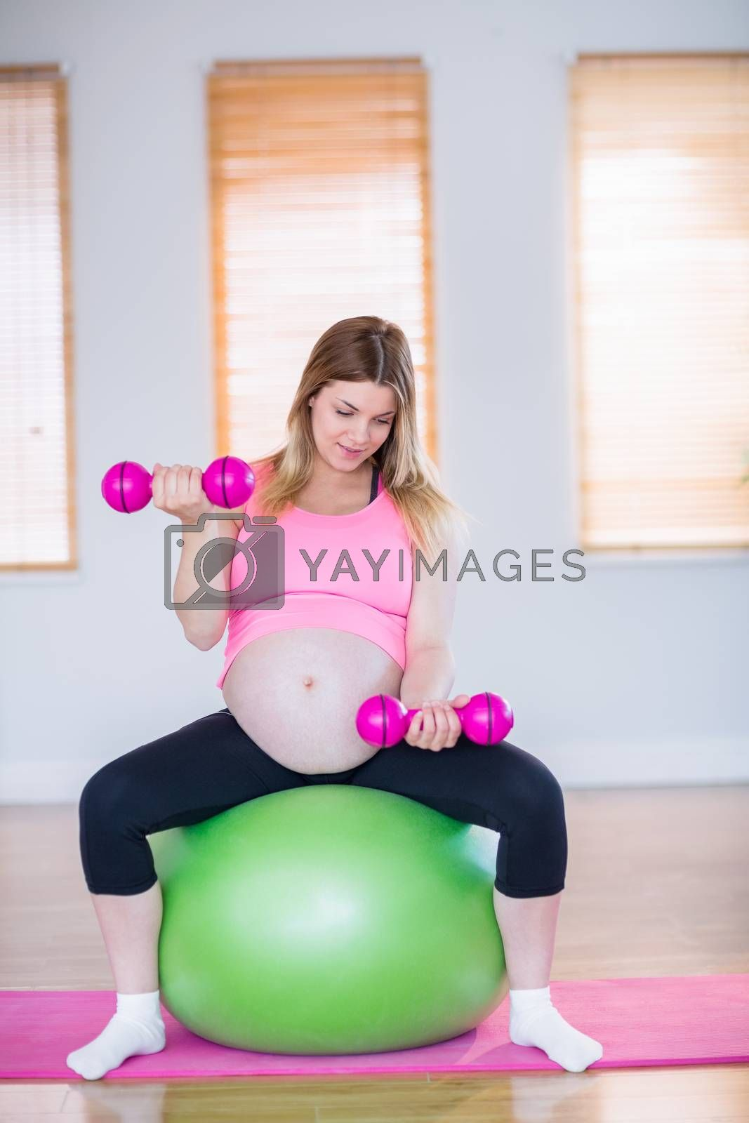 Royalty free image of Pregnant woman lifting dumbbells on exercise ball  by Wavebreakmedia
