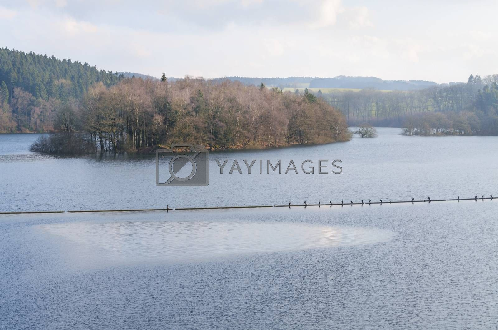 Royalty free image of Dam reservoir, concrete dam, by JFsPic