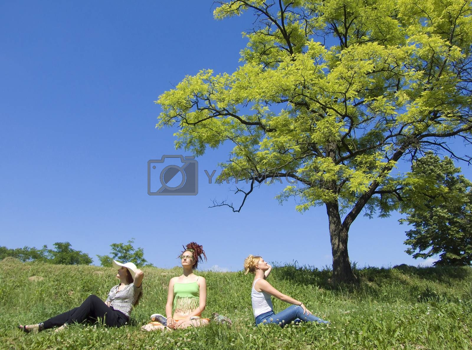 three women sitting under tree         tree women sitting under tree