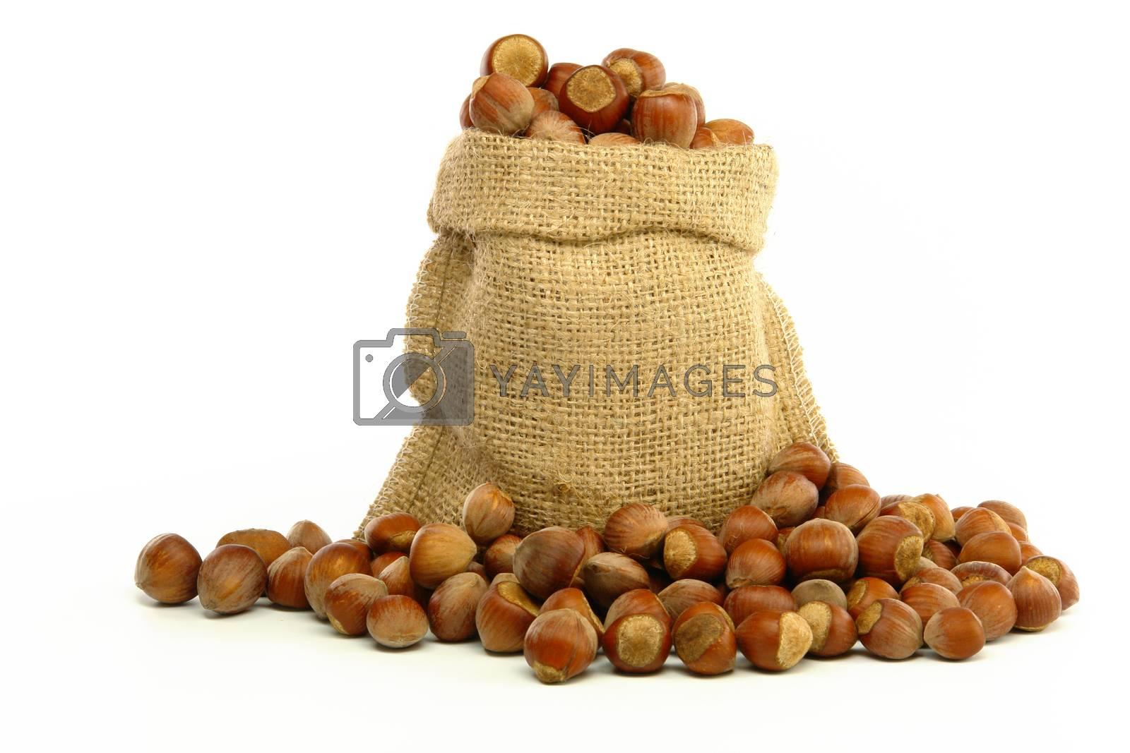 Hazelnuts in Bag