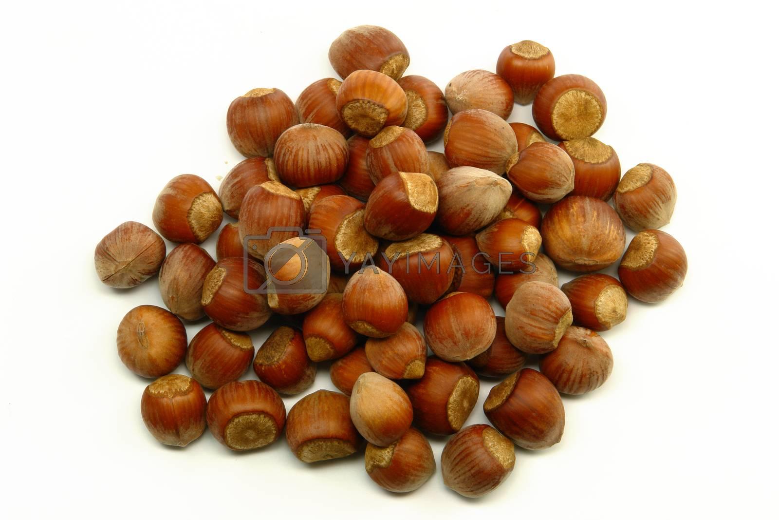 Stack of Hazelnut