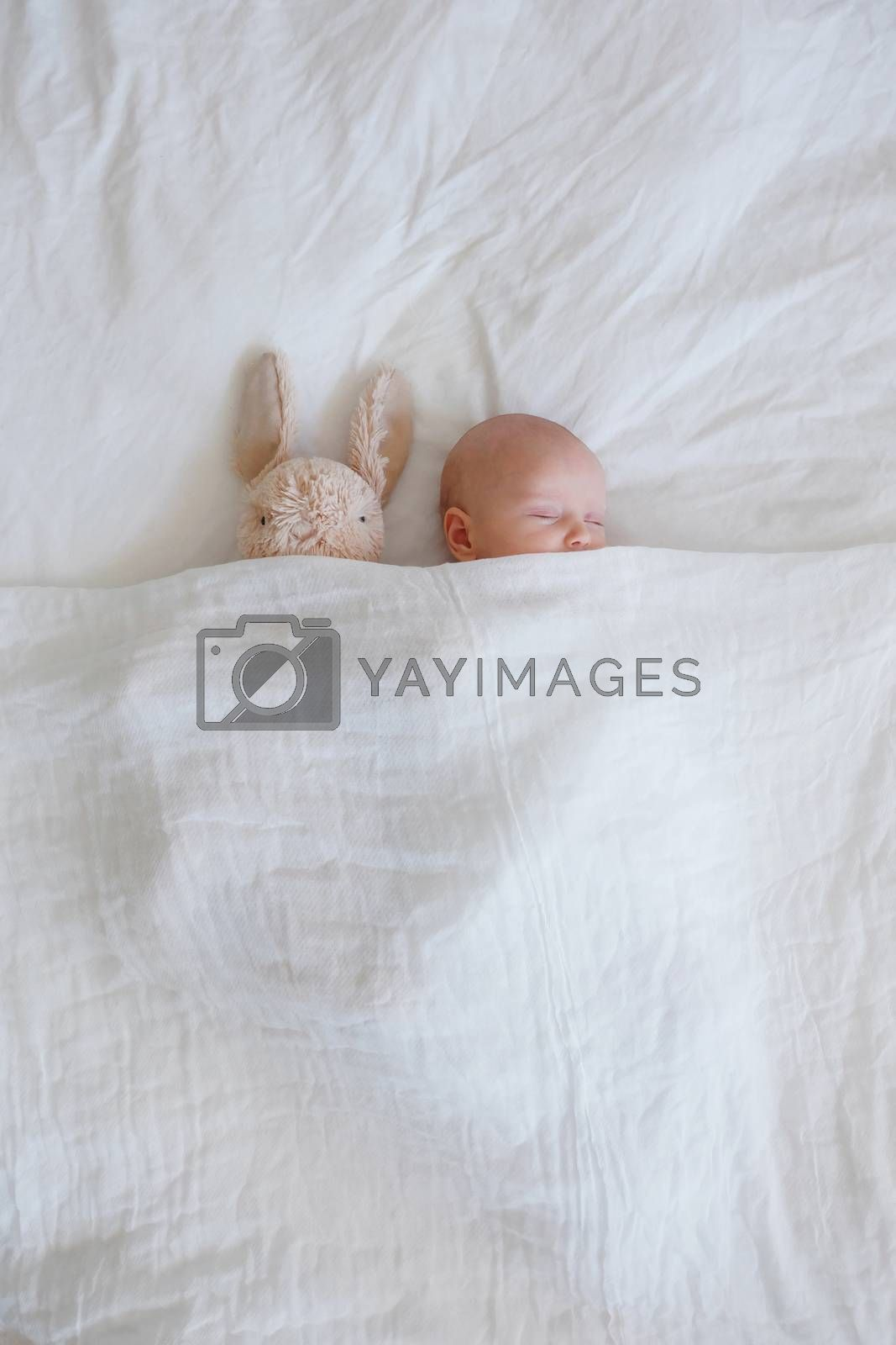 Sleeping baby and bunny by mmm
