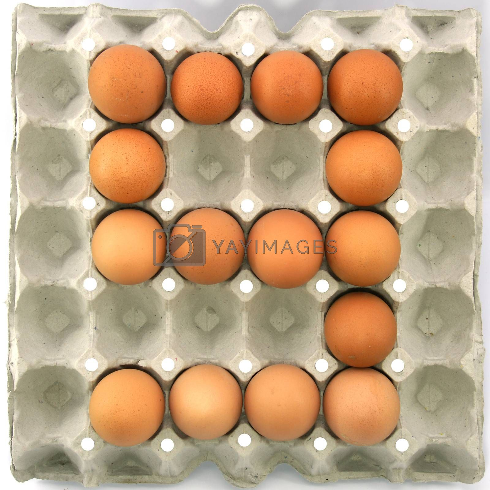 Number nine of eggs in the paper package tray
