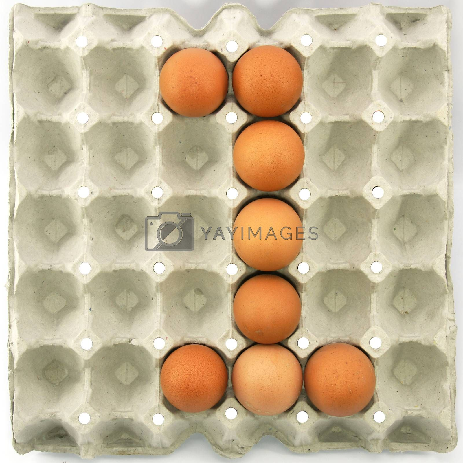 Number one of eggs in the paper package tray