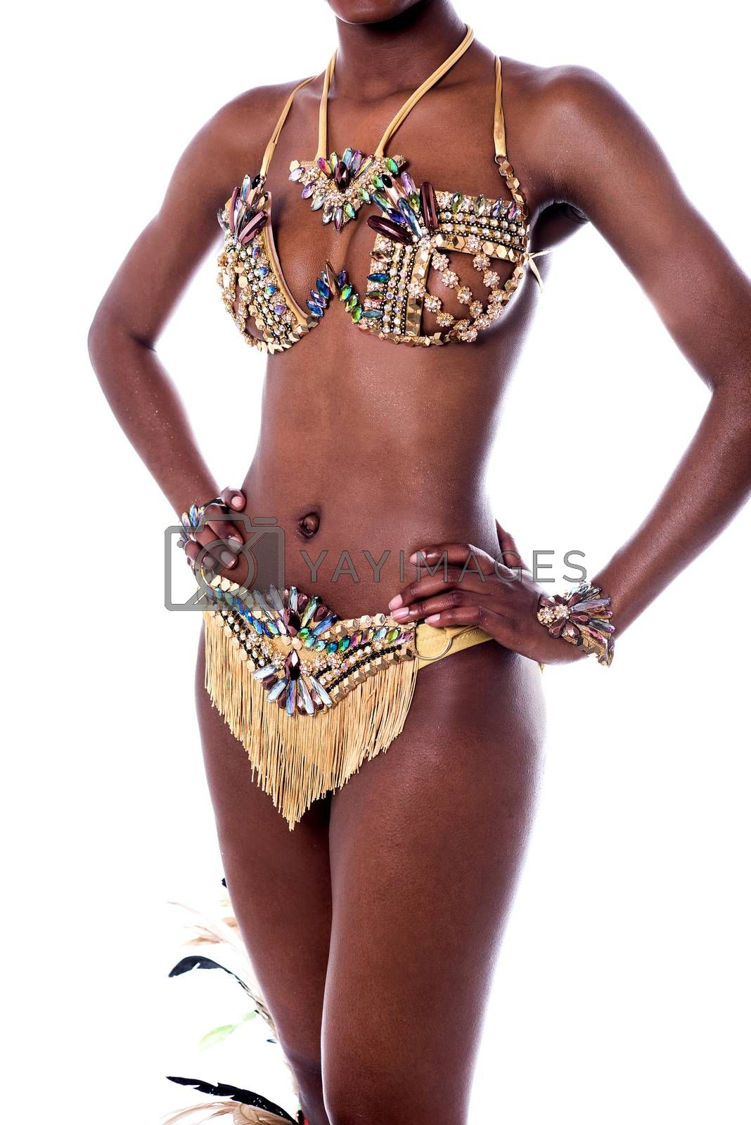 Cropped image of a woman samba dancer