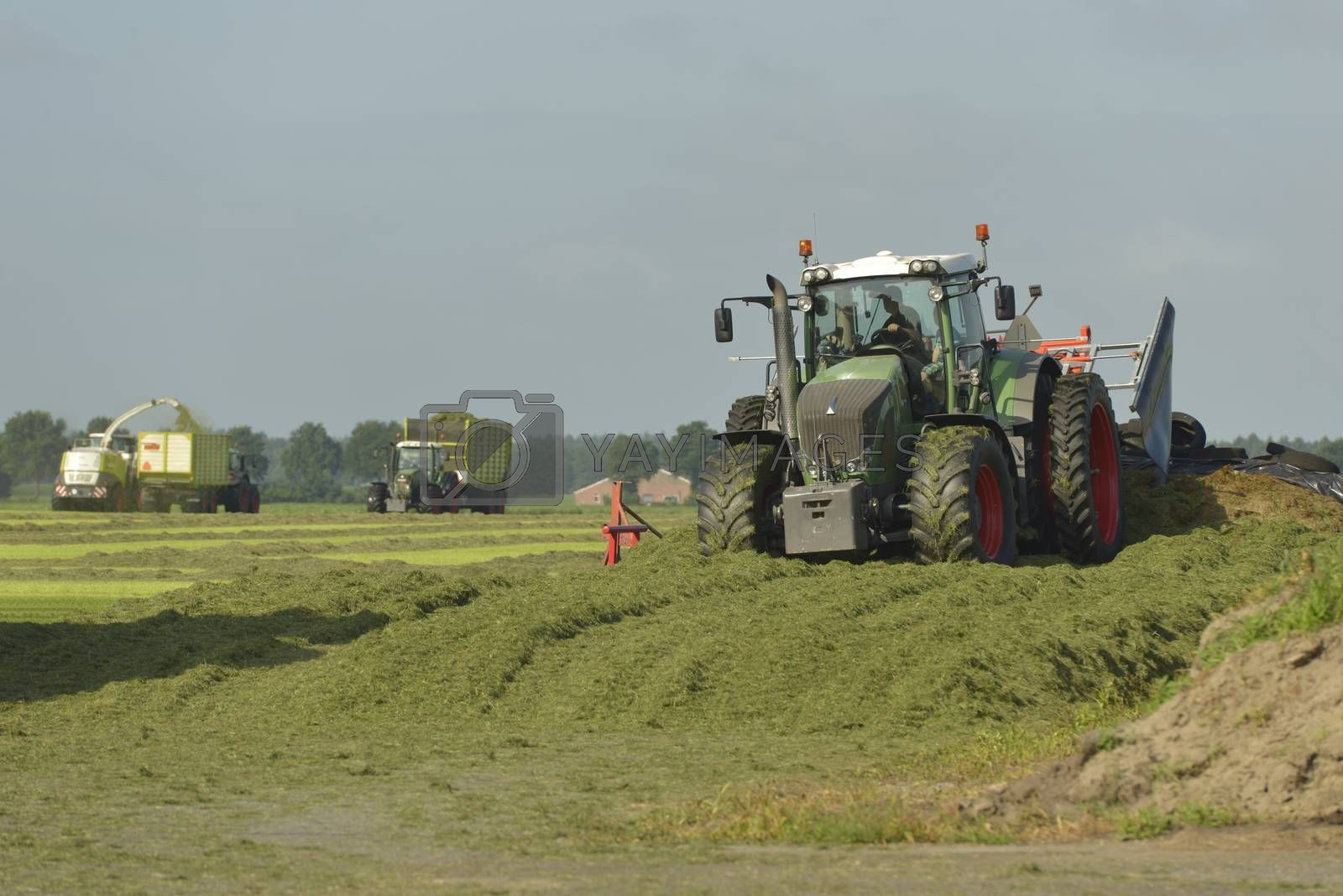 Agriculture, cut grass chopping and silage with tractors