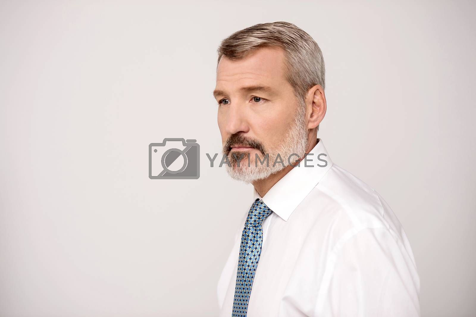 Portrait of a senior businessman isolated on grey background