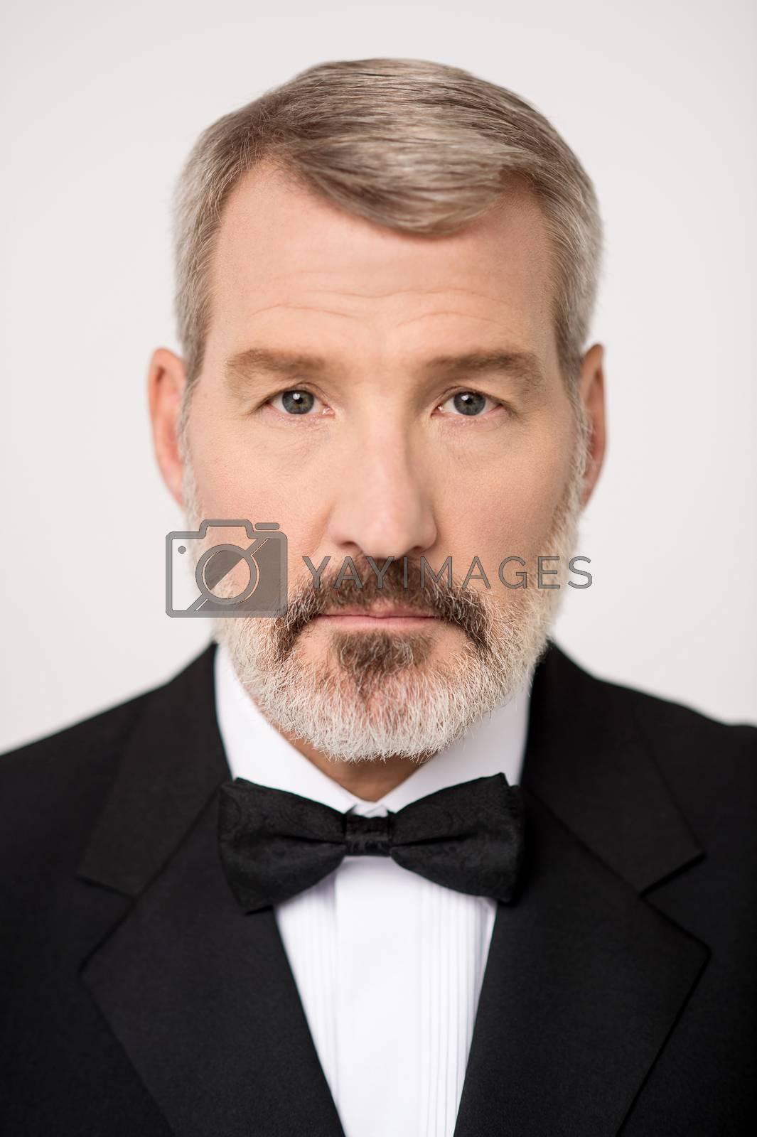 Portrait of a senior businessman posing to camera
