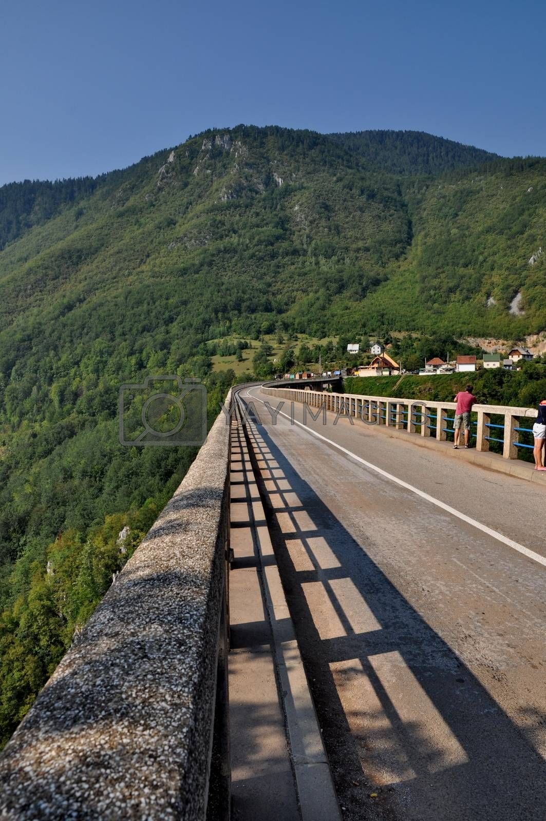 Royalty free image of Tara bridge in Monte Negro by anderm