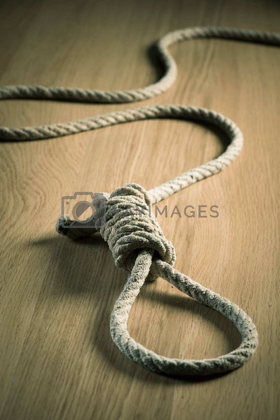 Noose lying on hardwood floor, suicide and punishment concept.