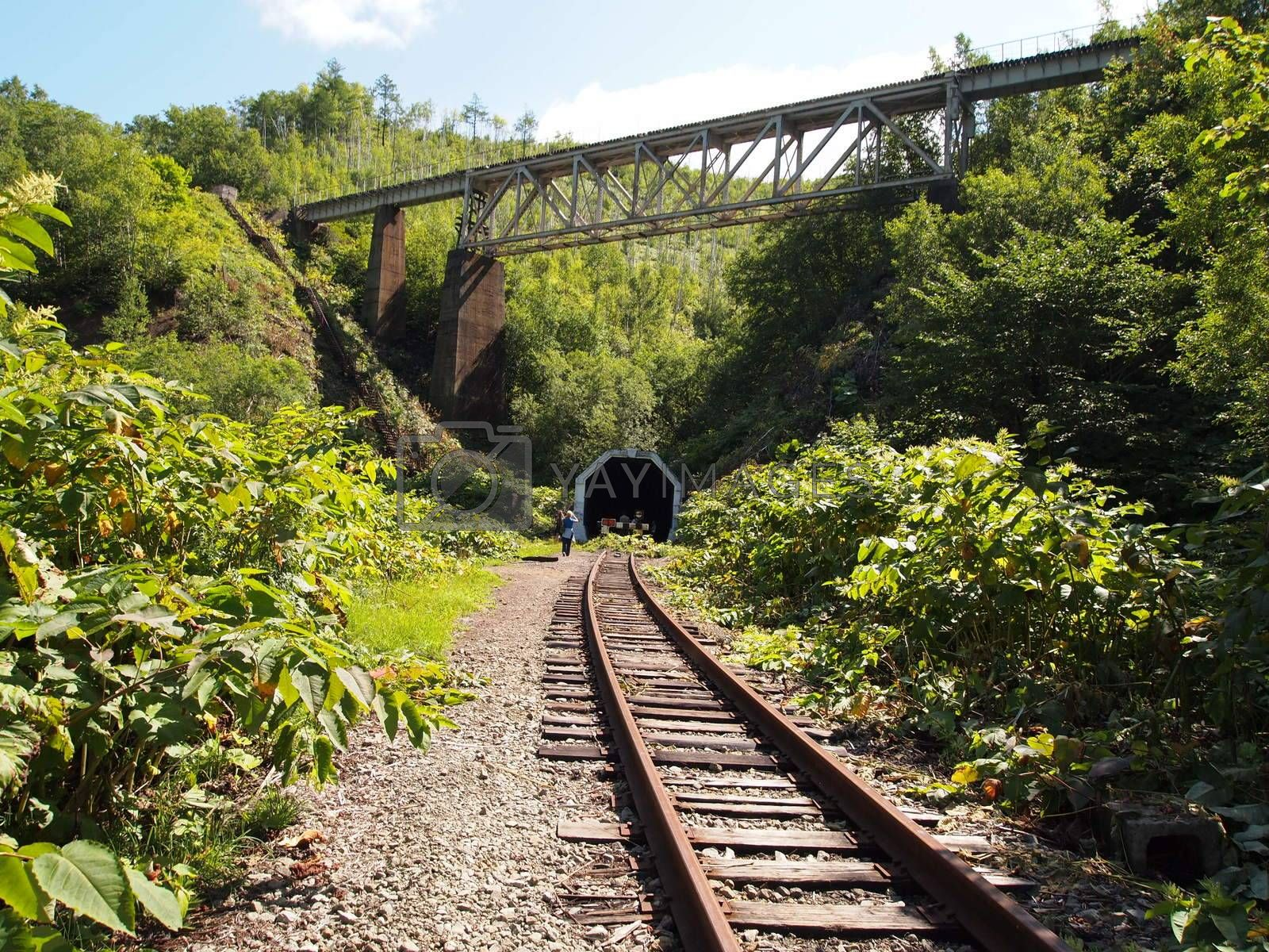 Tunnel in the mountain. The railroad through the mountain.