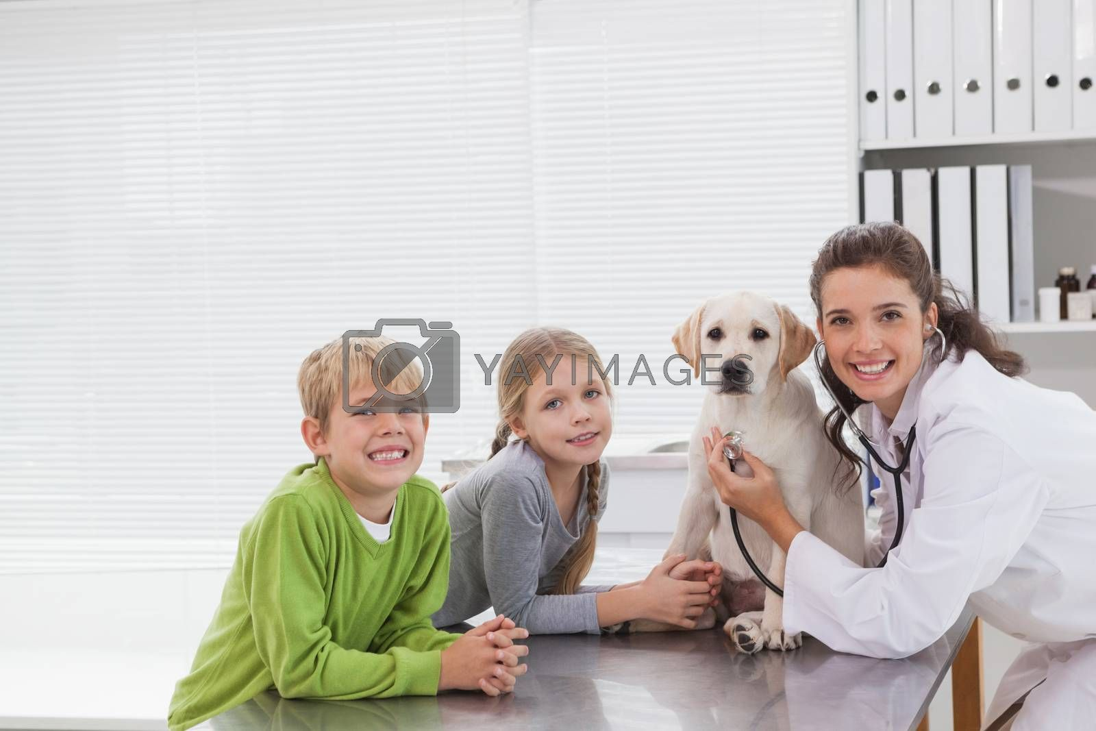 Smiling vet examining a dog with its owners in medical office