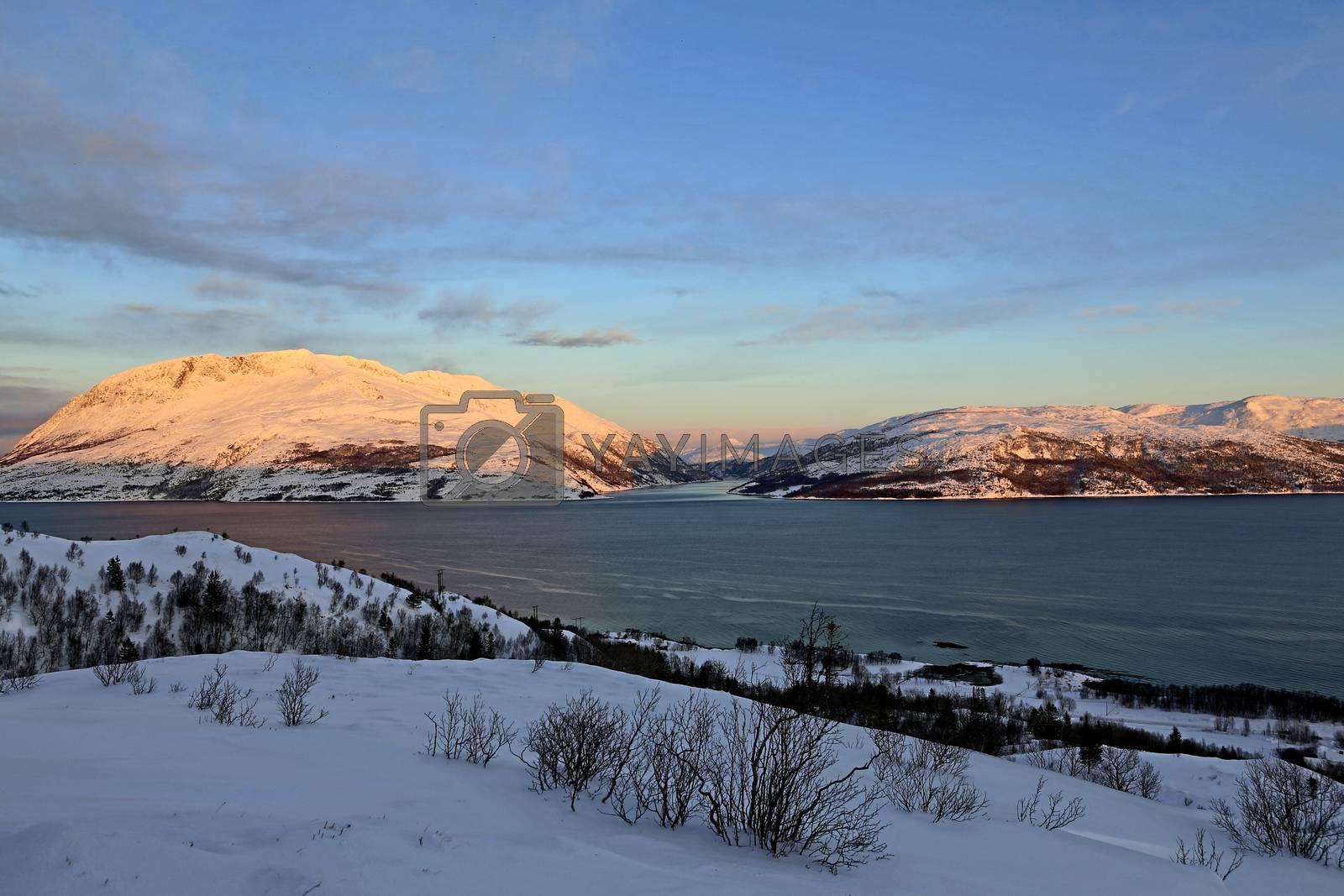 Skitur i Gåsheia område i Brønnøy