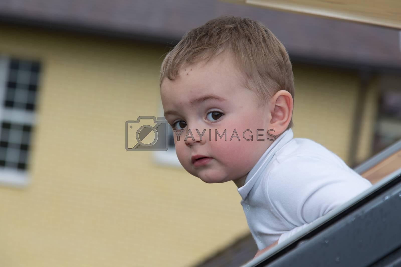 pretty little baby boy шт window