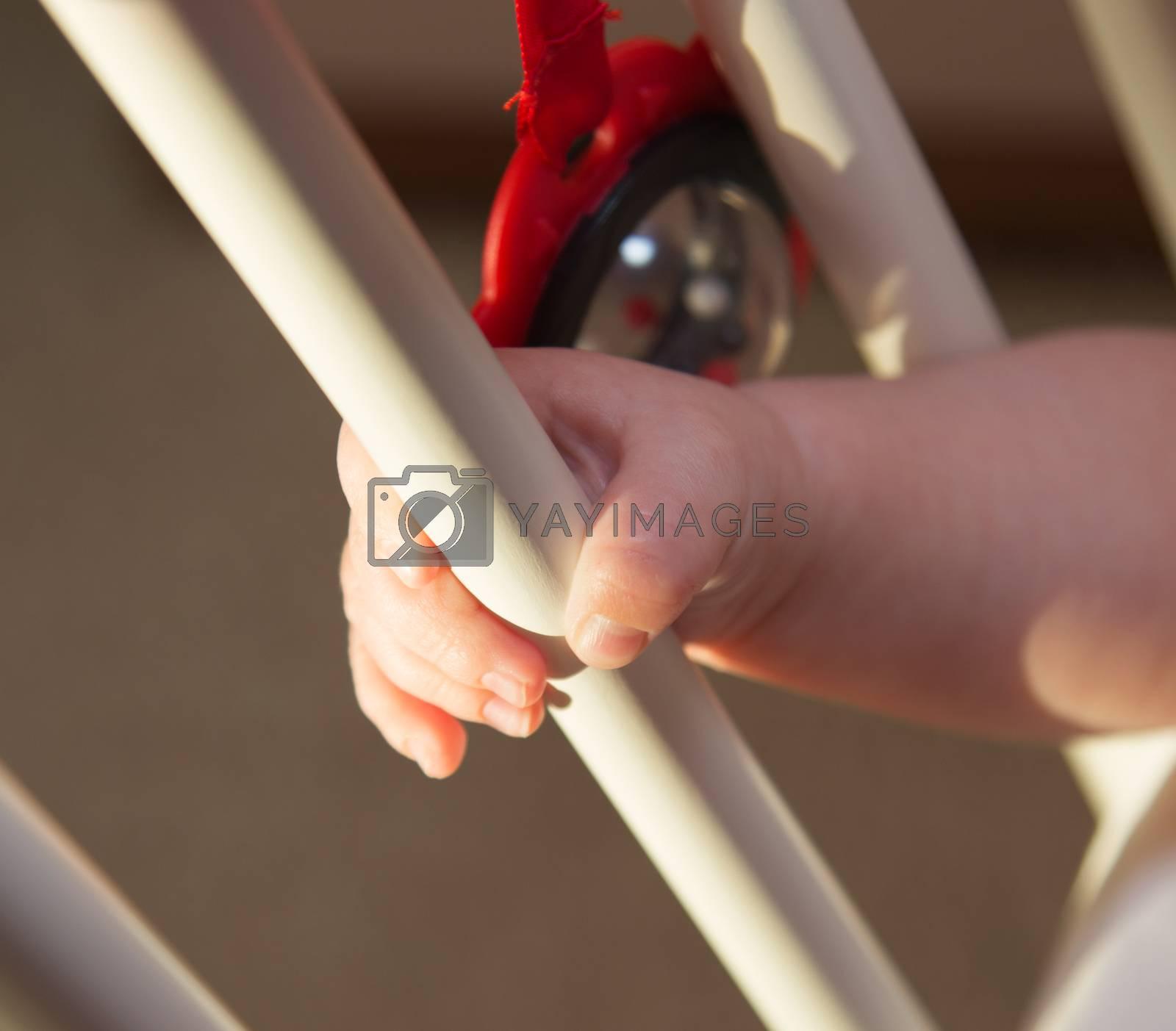 pretty little baby boy hand