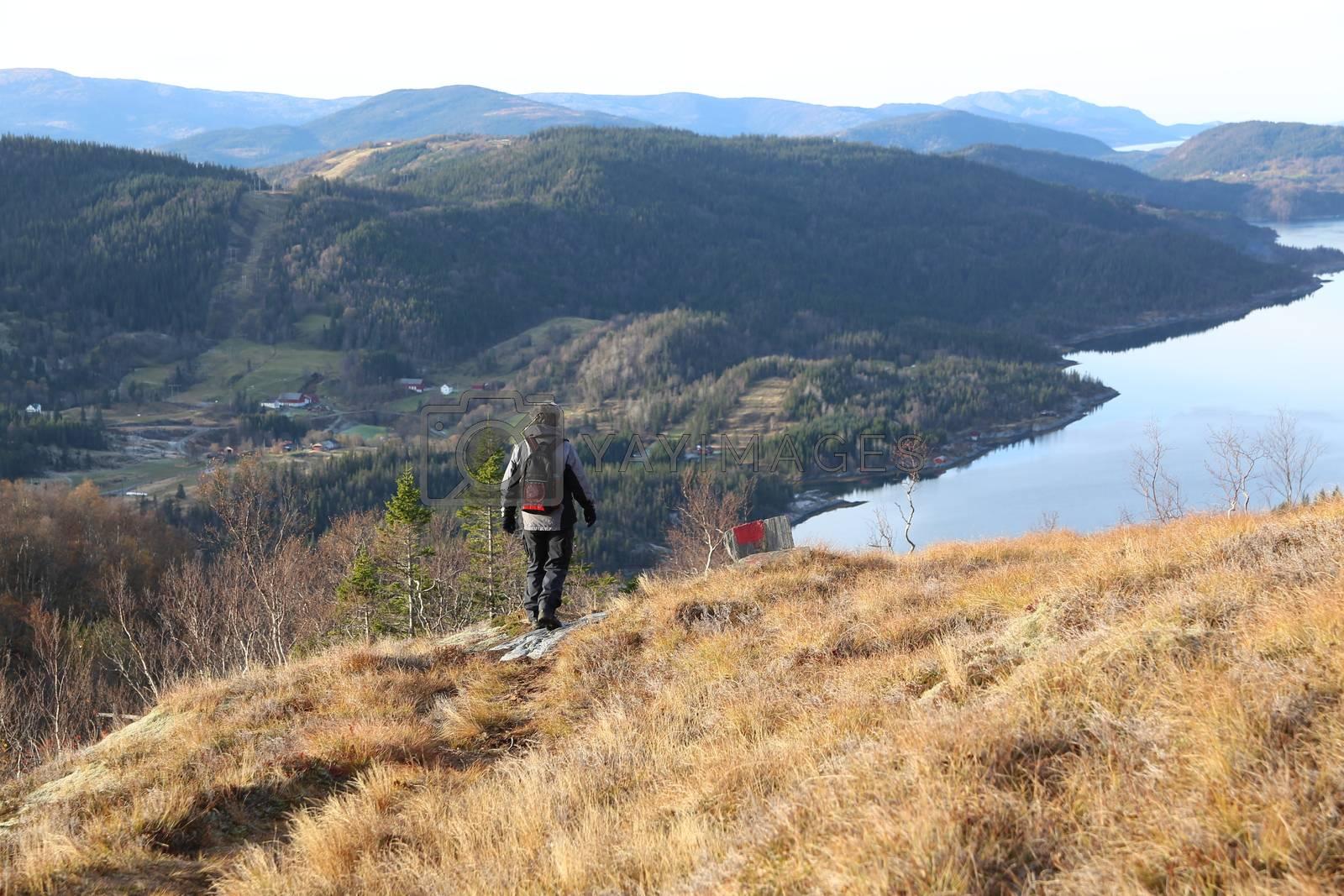 Fottur til Ørtind i Langfjorden Brønnøy kommune