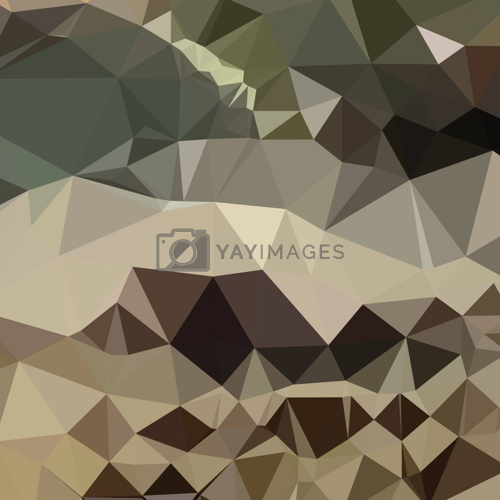 Low polygon style illustration of a drab brown blue abstract geometric background.
