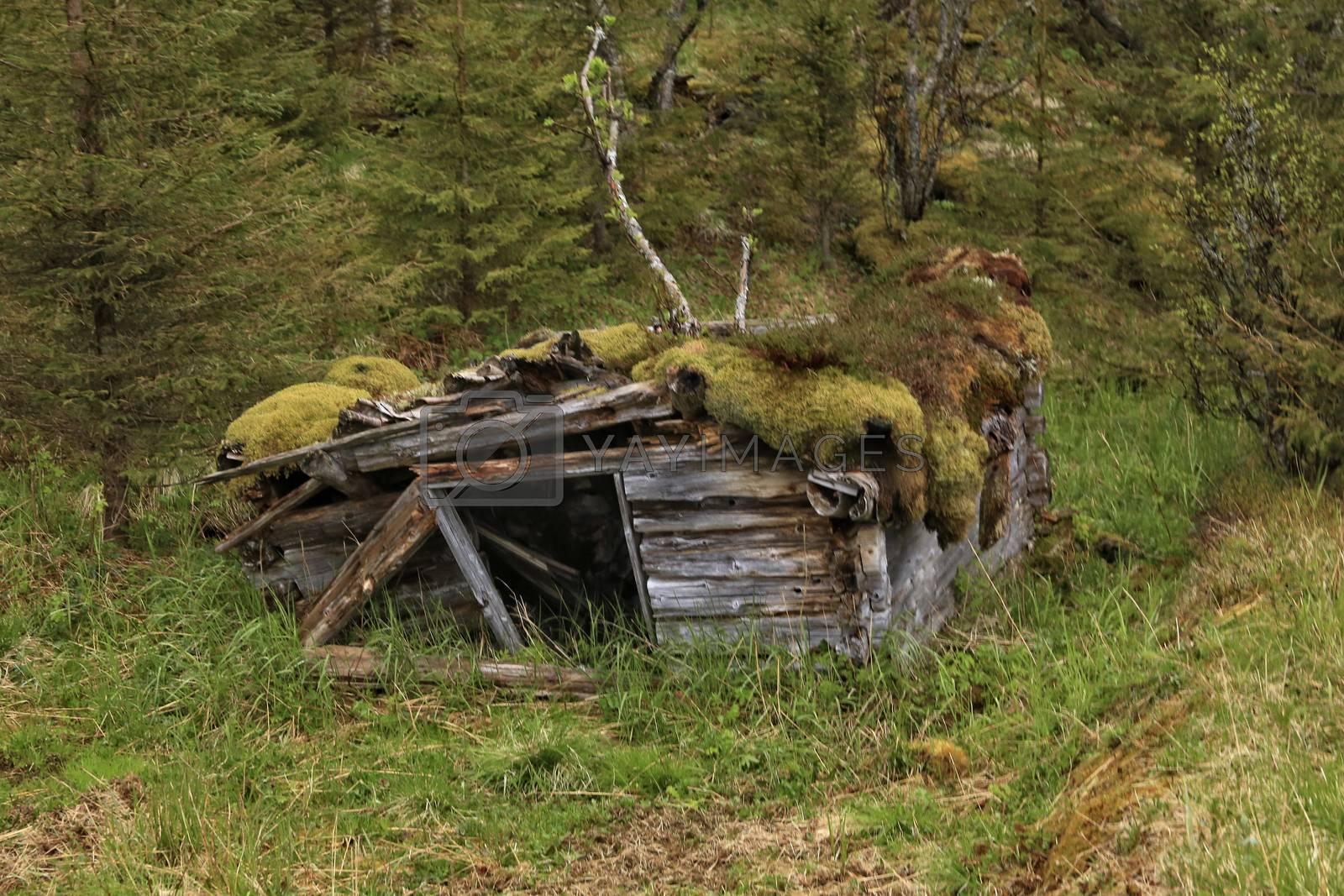 Fra en ødegård i langfjorden i Brønnøy kommune