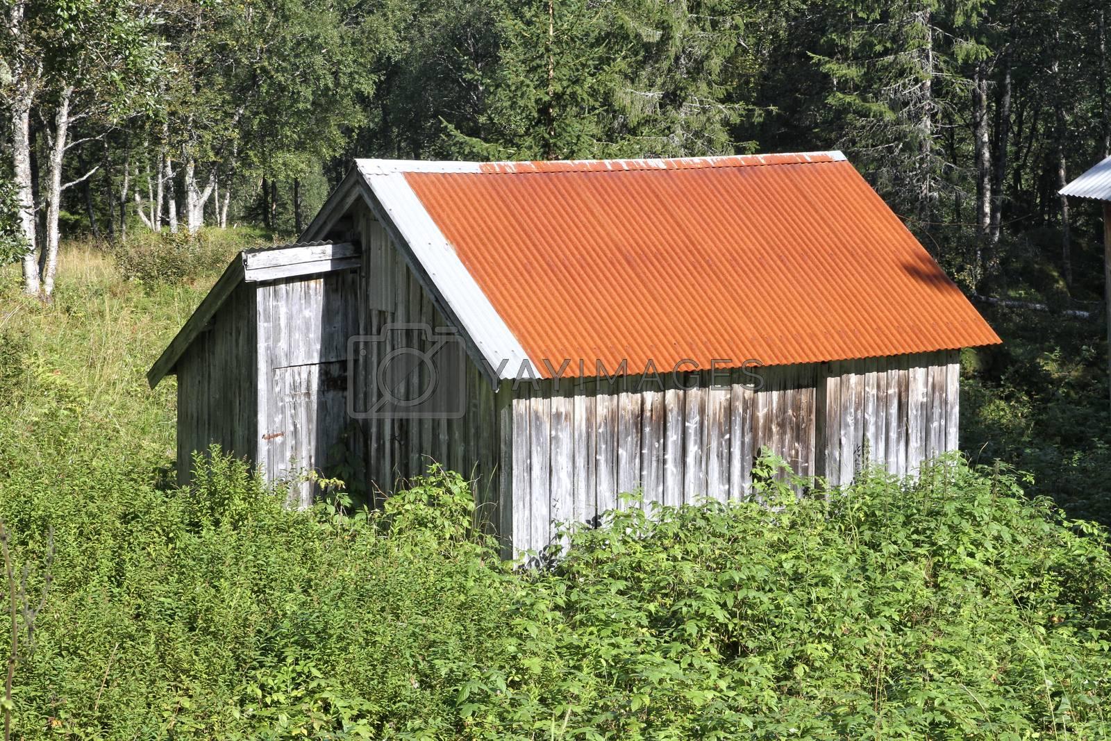 Fra Dalen i Velfjord i Brønnøy kommune