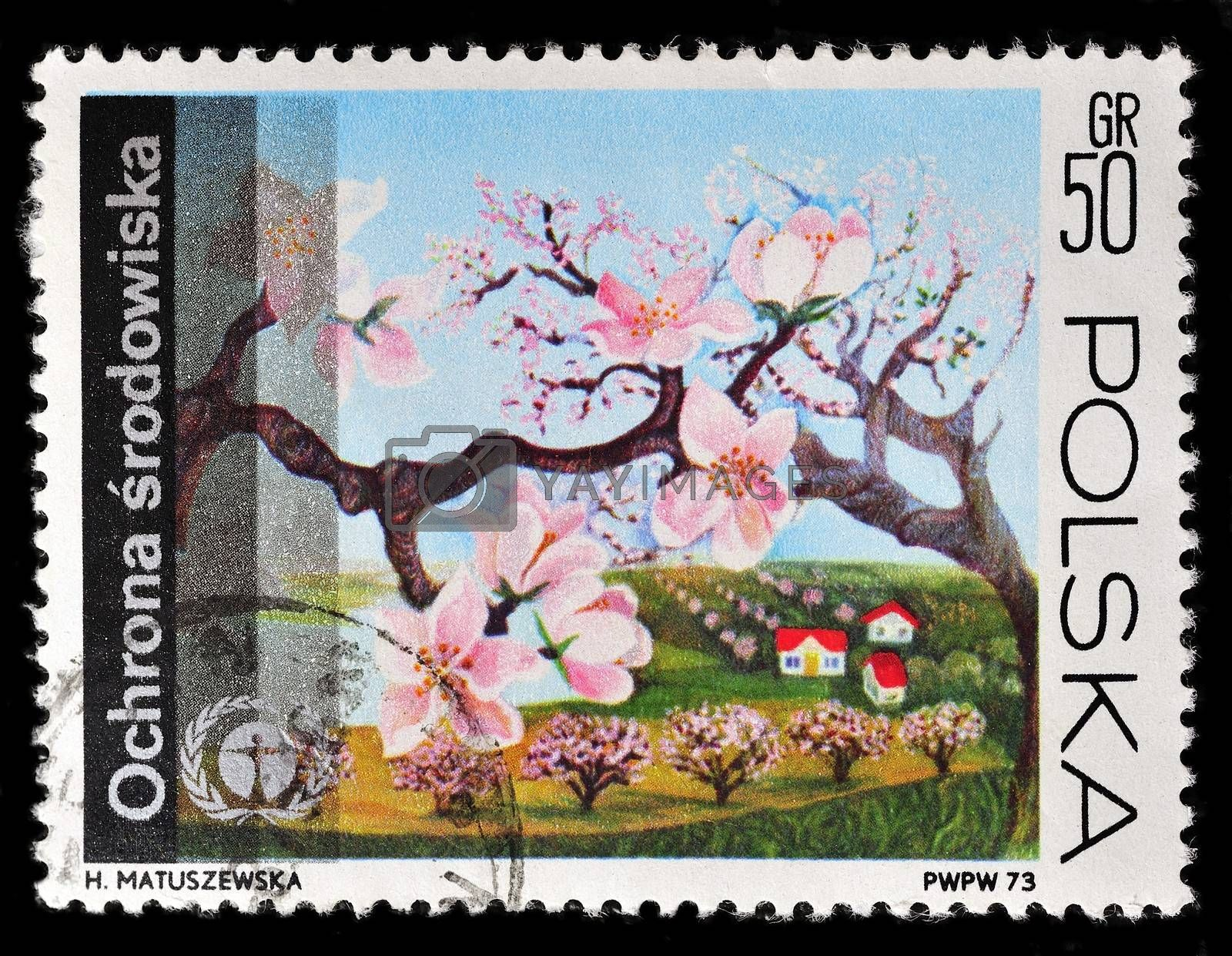 Poland - CIRCA 1974: A stamp is printed in Poland and visited Peach branch, let out CIRCA in 1974.