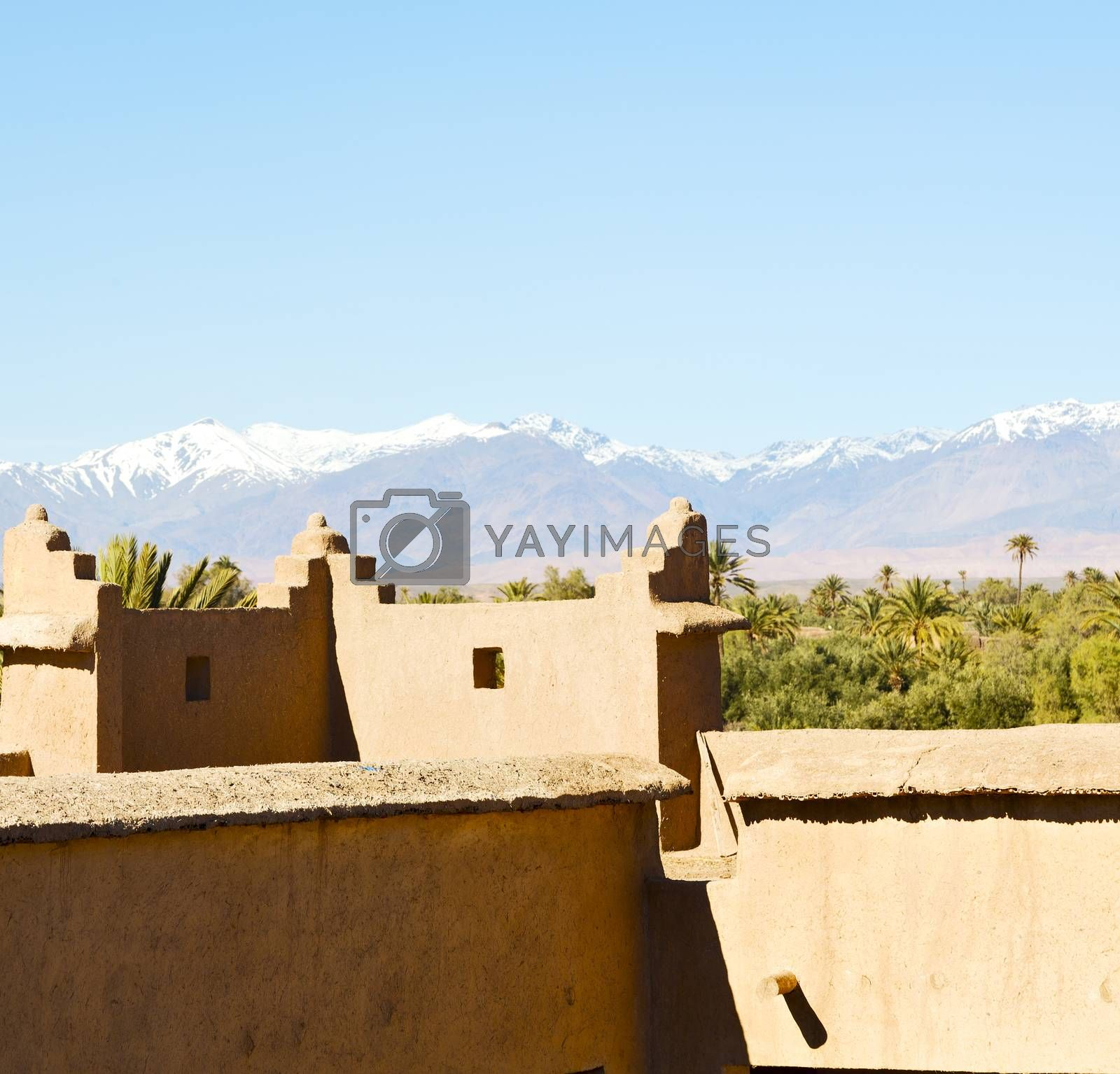 Royalty free image of brown  tower  old  construction in  africa morocco and  clouds   by lkpro