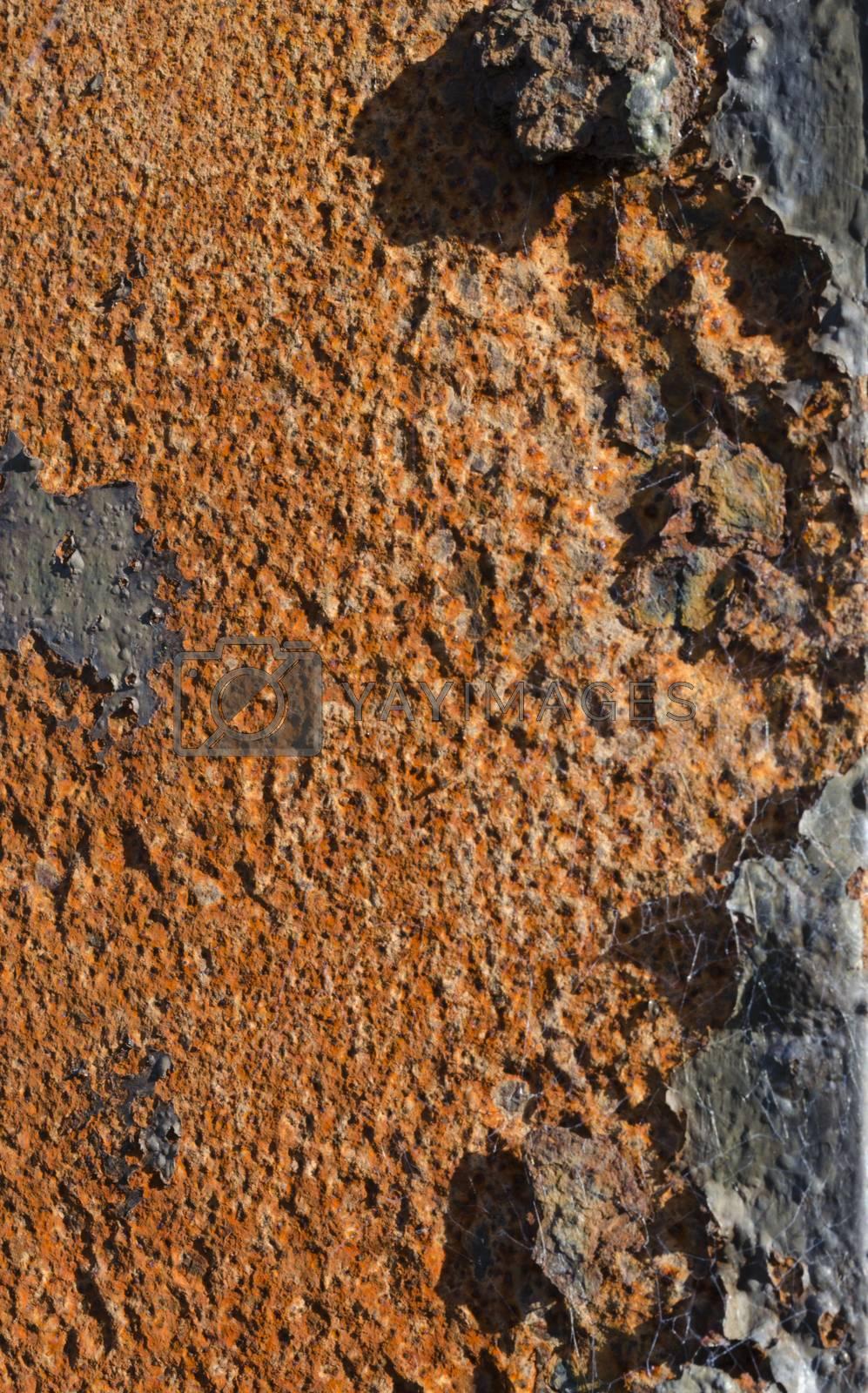 Royalty free image of Rusty metalwork by JohnDavidPhoto