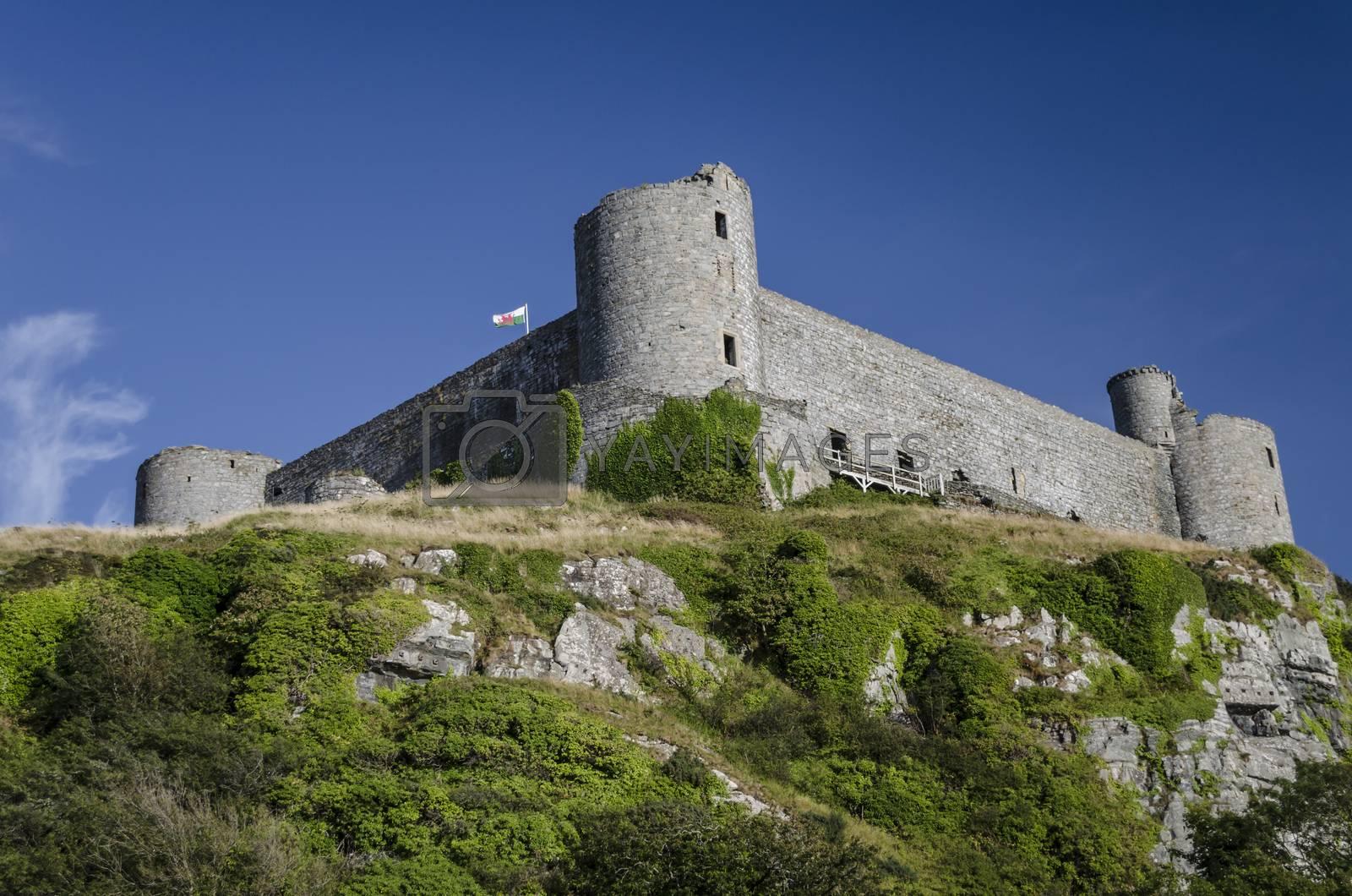 Royalty free image of Harlech Castle by JohnDavidPhoto