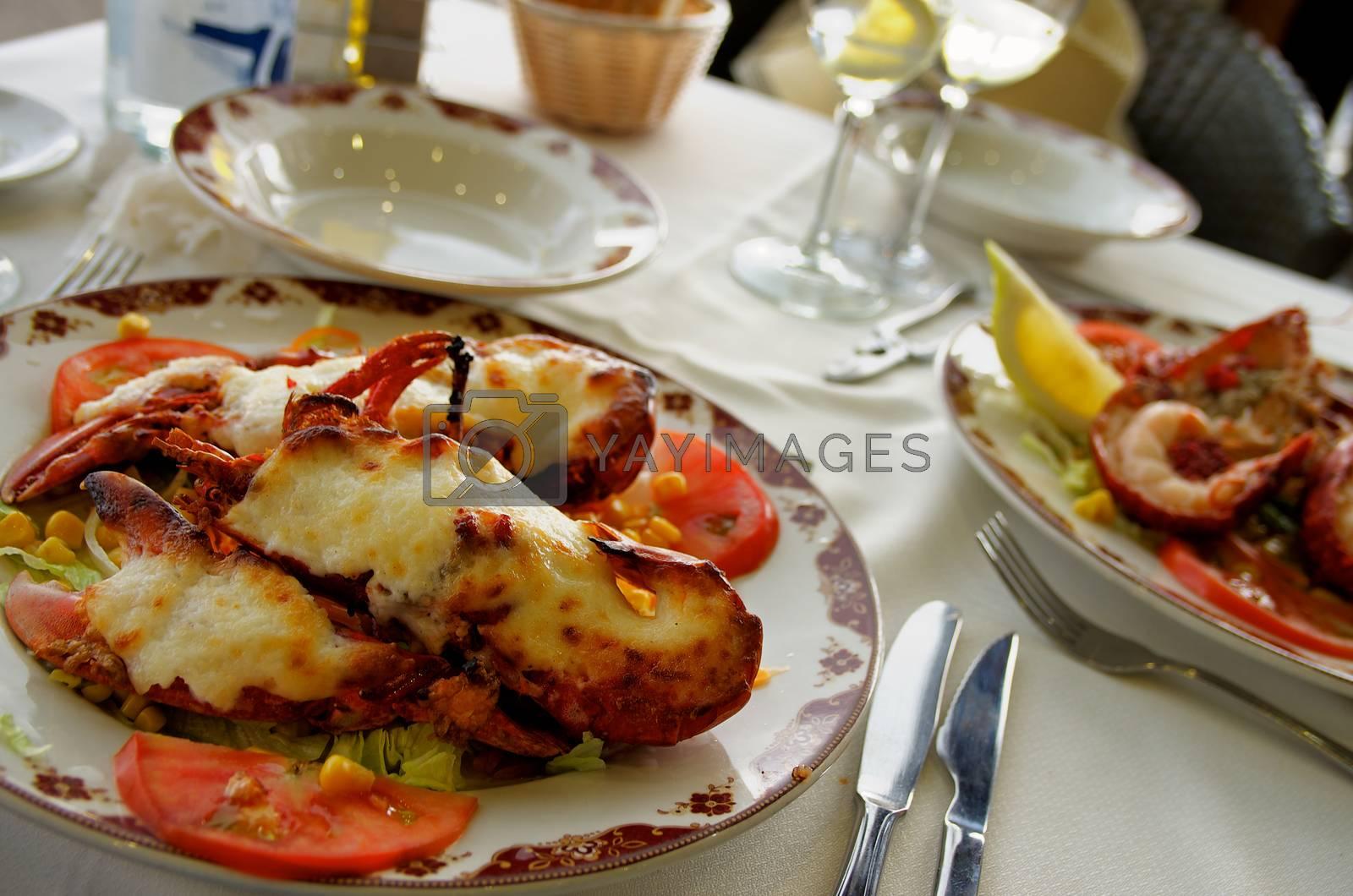 Royalty free image of Gourmet Lobster by zhekos
