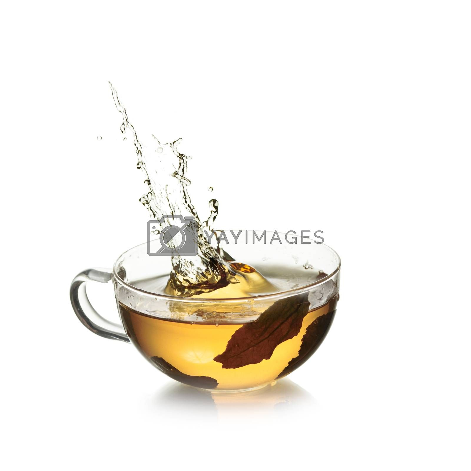 Royalty free image of Tea splash by maxsol