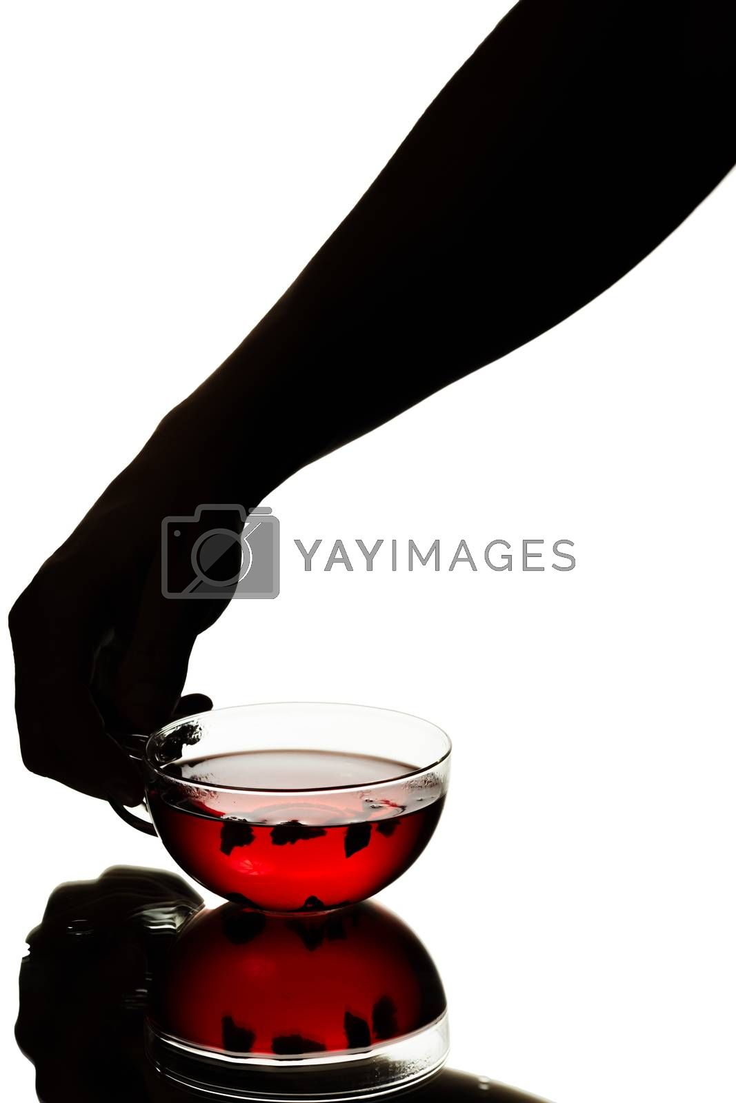 Royalty free image of Hand holding a cup of tea by maxsol