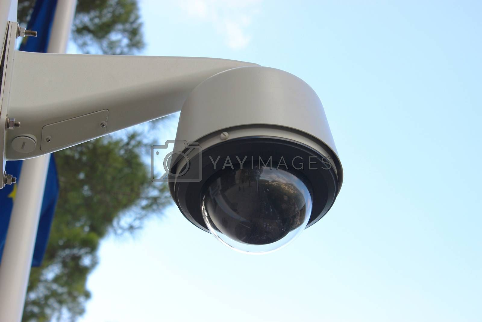 Royalty free image of Dome Type Camera  by bensib