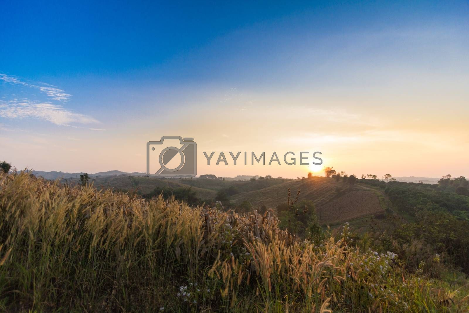 Royalty free image of sunset in the mountains landscape by kritsada1992