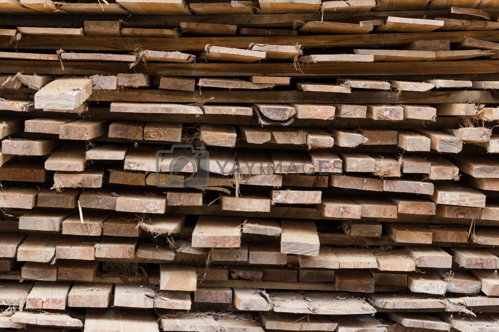 Royalty free image of Wood texture  by kritsada1992