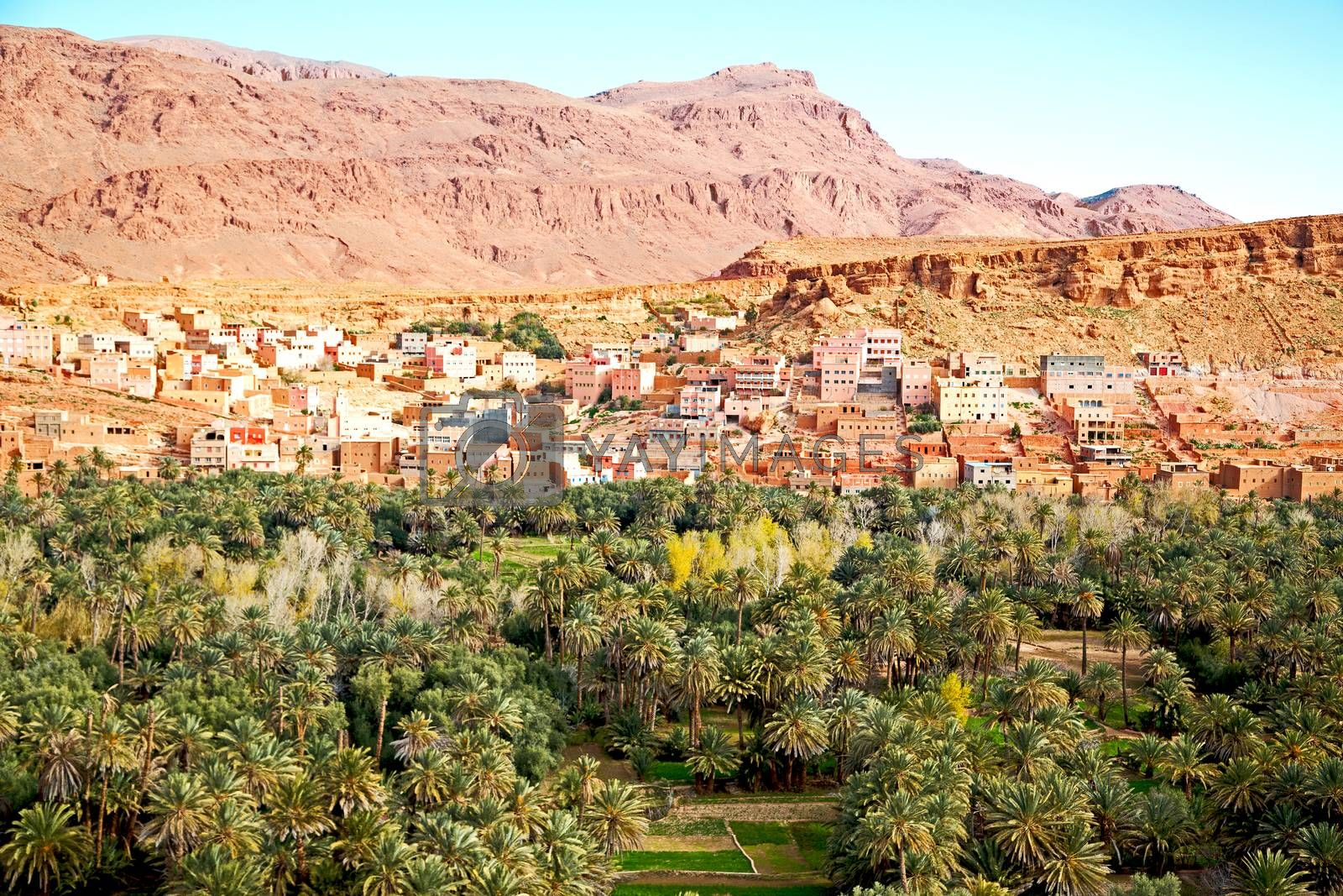 Royalty free image of  in   gorge morocco africa and  village by lkpro
