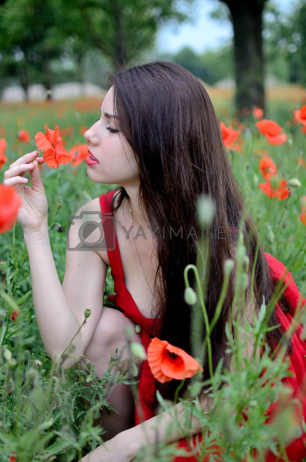 Royalty free image of Girl smells flower by bartekchiny