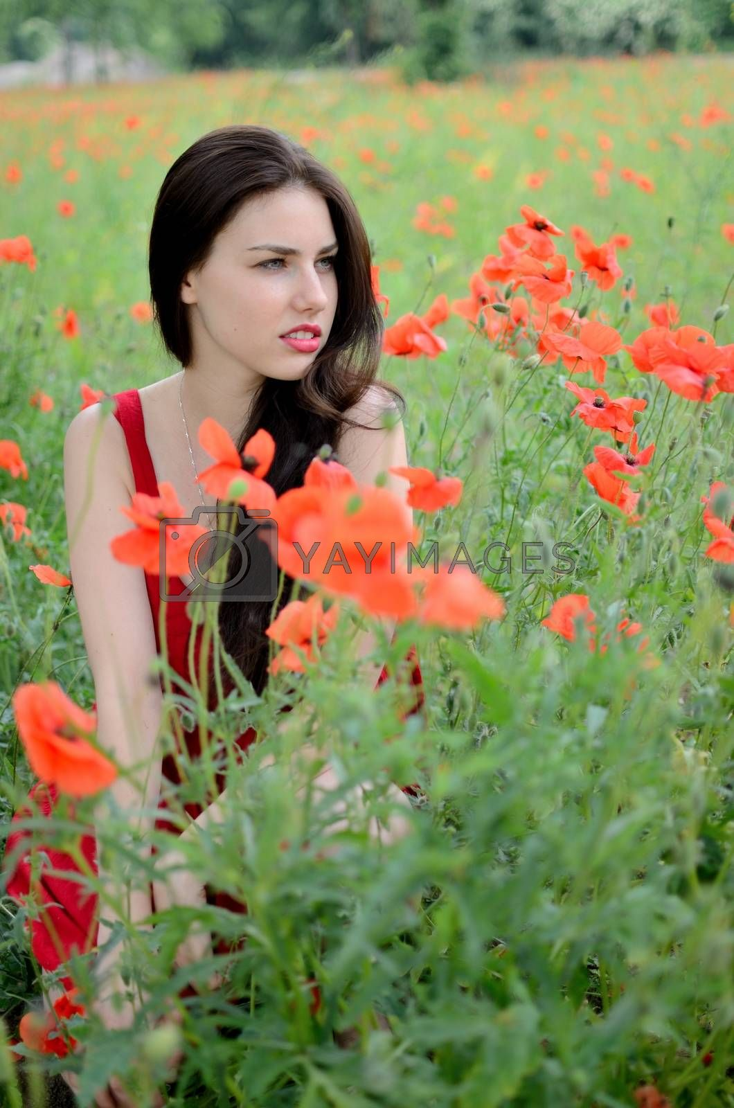 Royalty free image of Beautiful brunette with poppies by bartekchiny