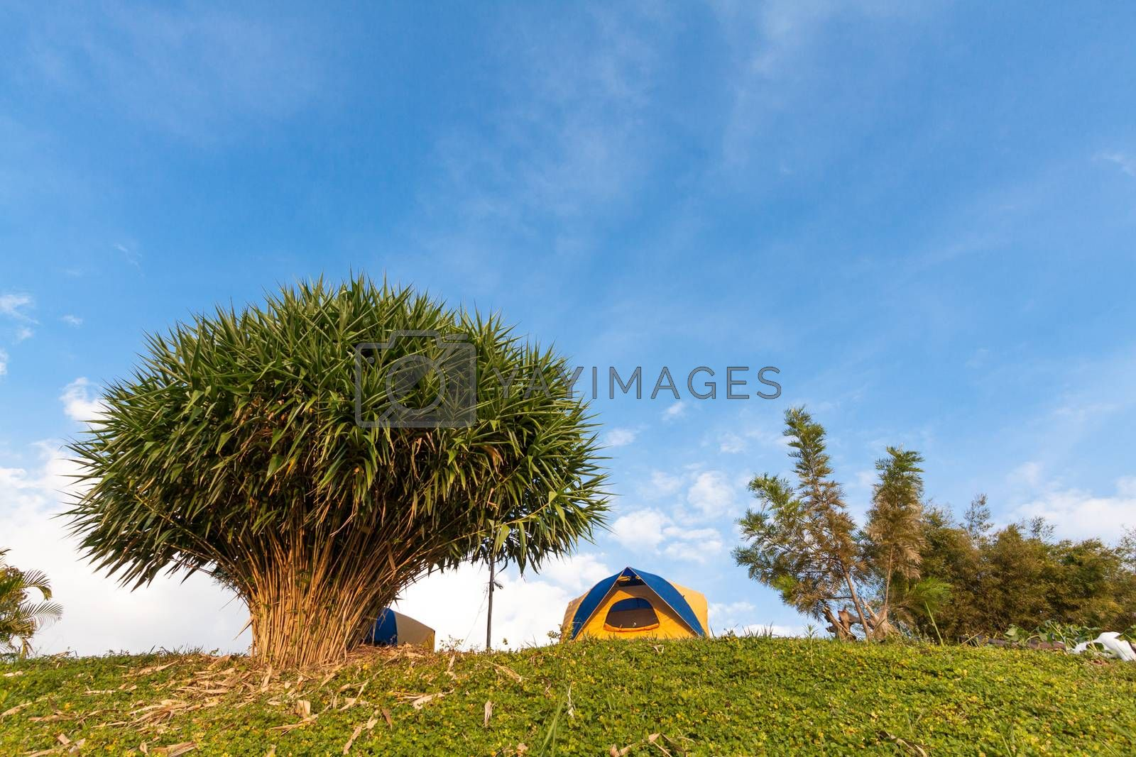 Royalty free image of tent on mountain in bule sky by kritsada1992