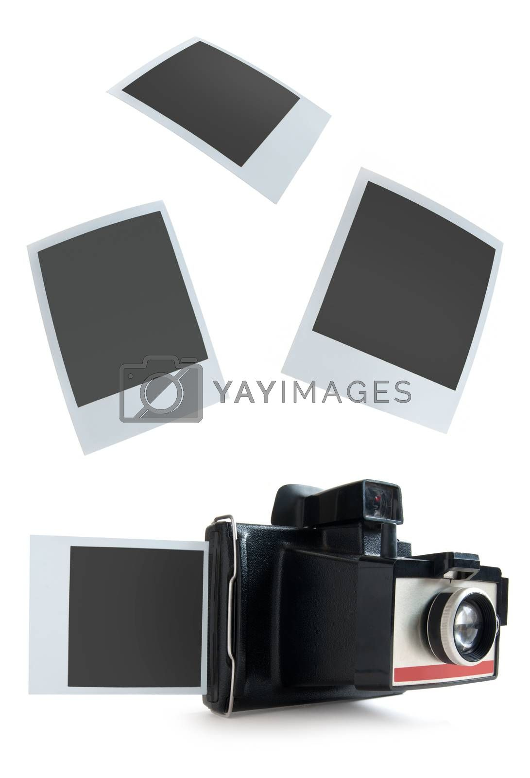 Royalty free image of Instant camera photos by unikpix