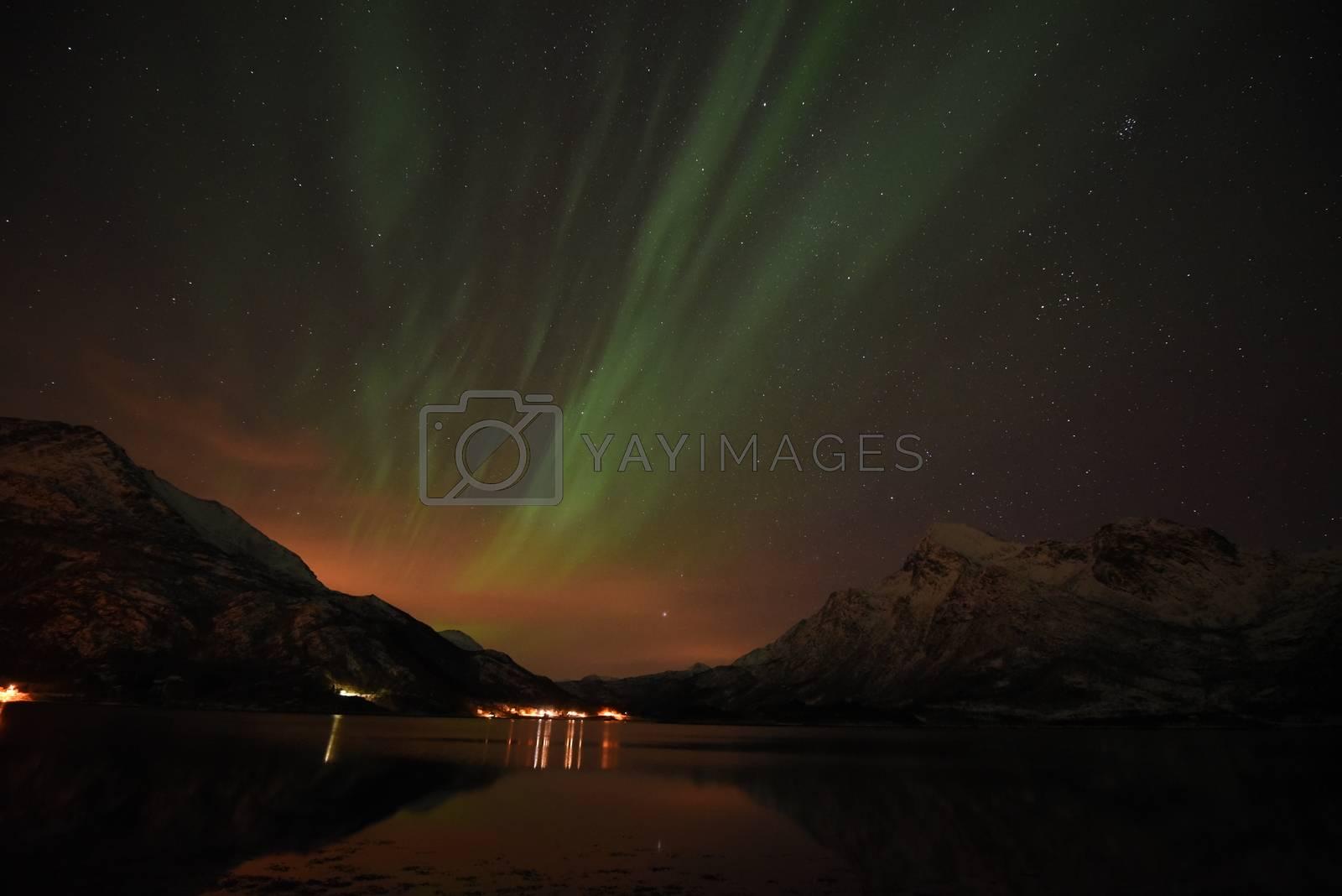 Royalty free image of Nordlys i Lofoten by jobb.pedersen@gmail.com