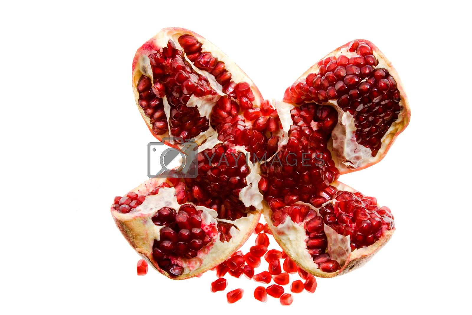 Royalty free image of Pomegranate by avq