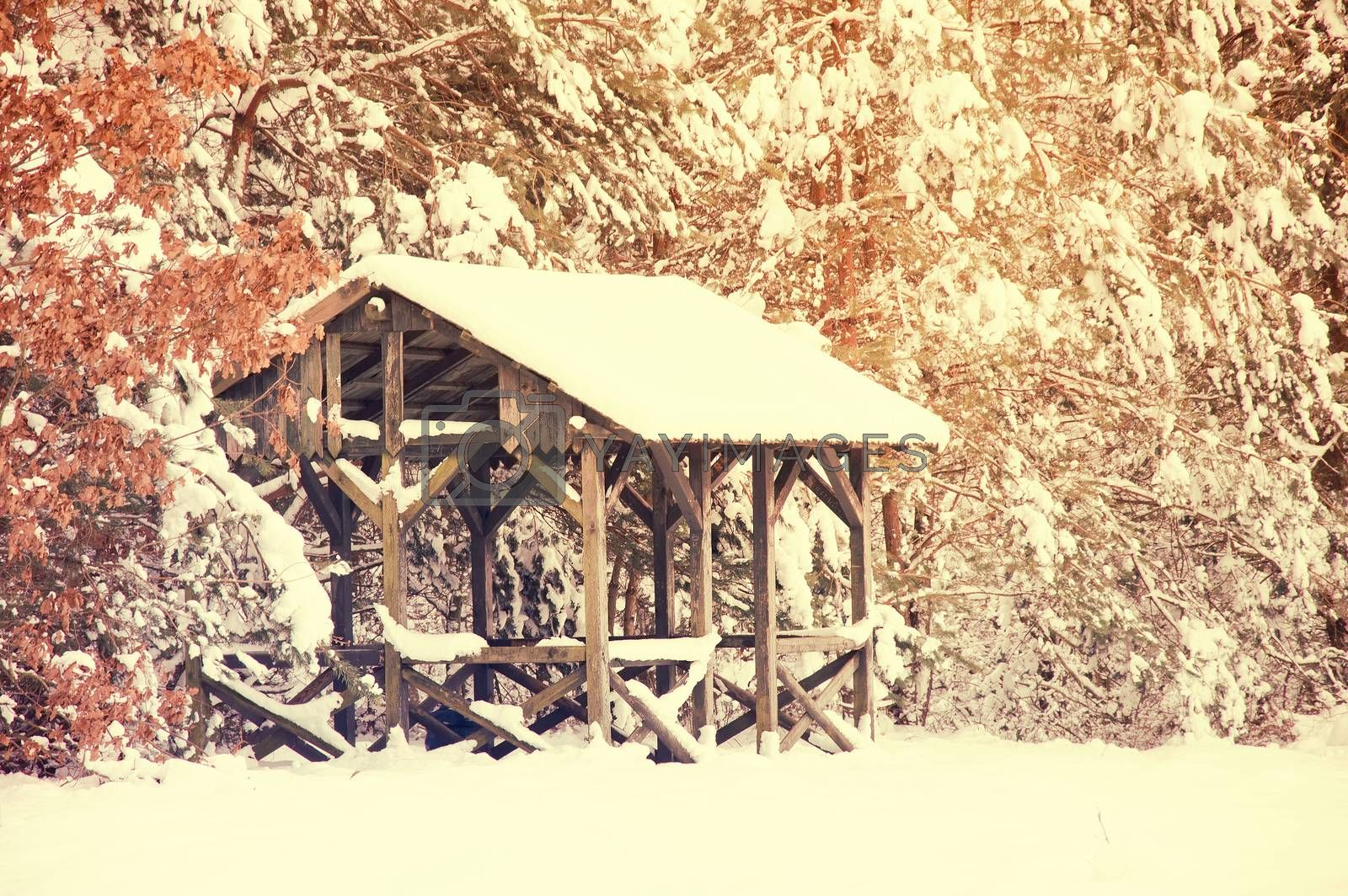 Winter conceptual image. Winter in the forest. Trees and small wooden house covered with snow. Pastel colors picture.