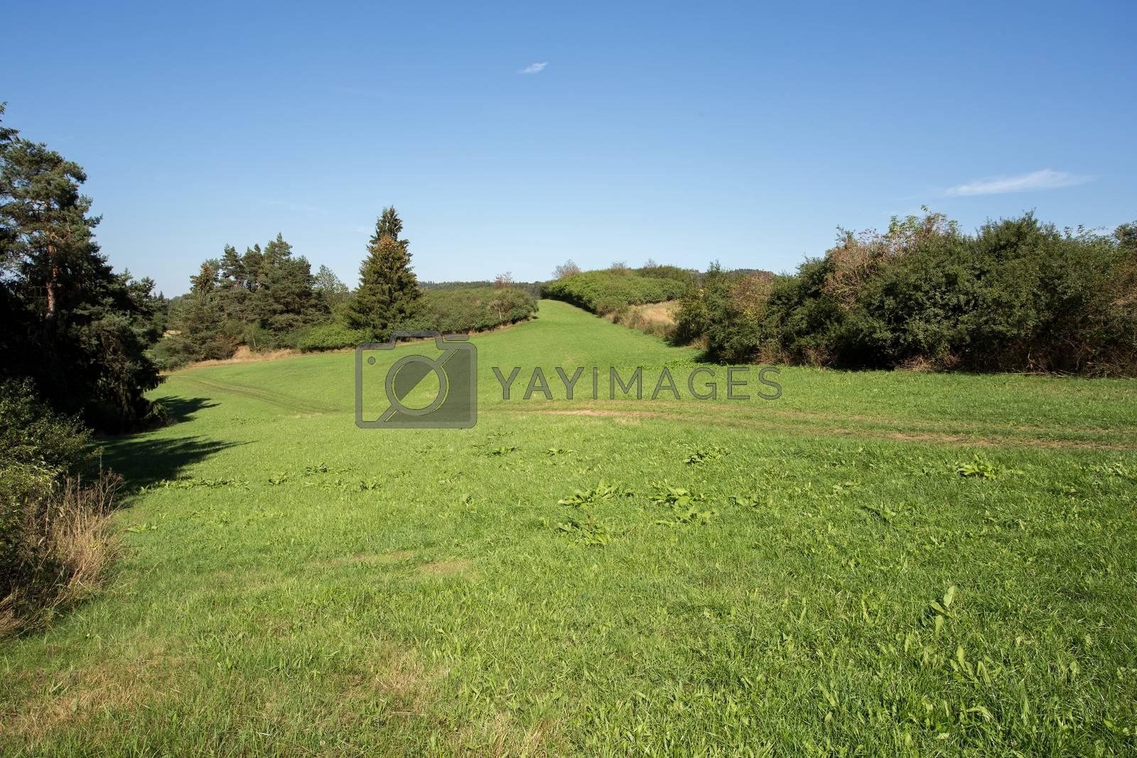 rural summer landscape in czech Republic - region Vysocina